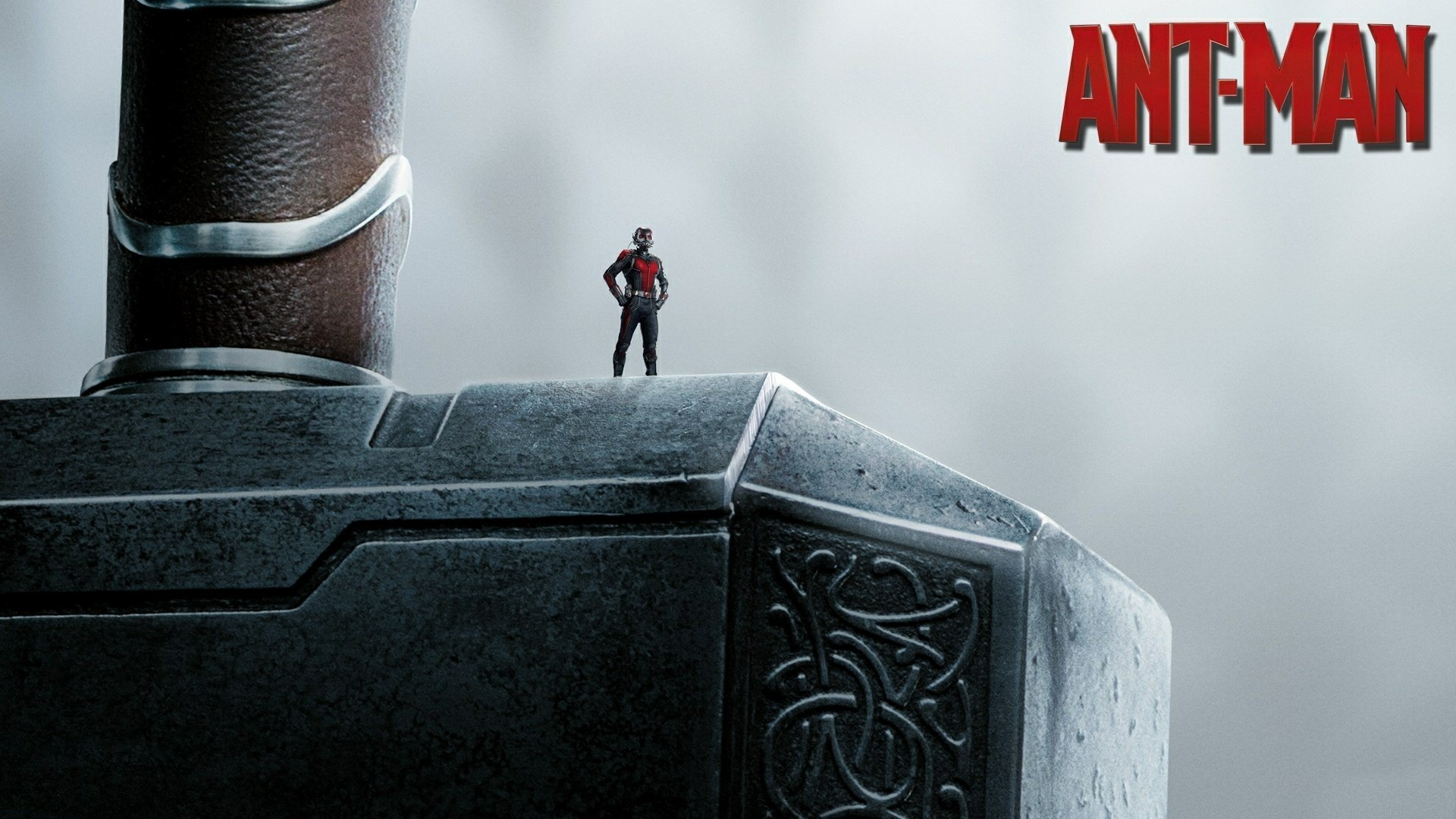 Ant man thor hammer wallpapers. Â«