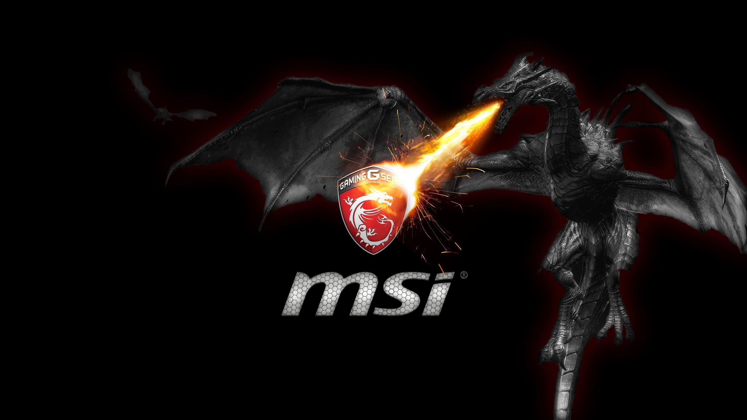 Download MSI HD 4k Wallpapers In Screen Resolution