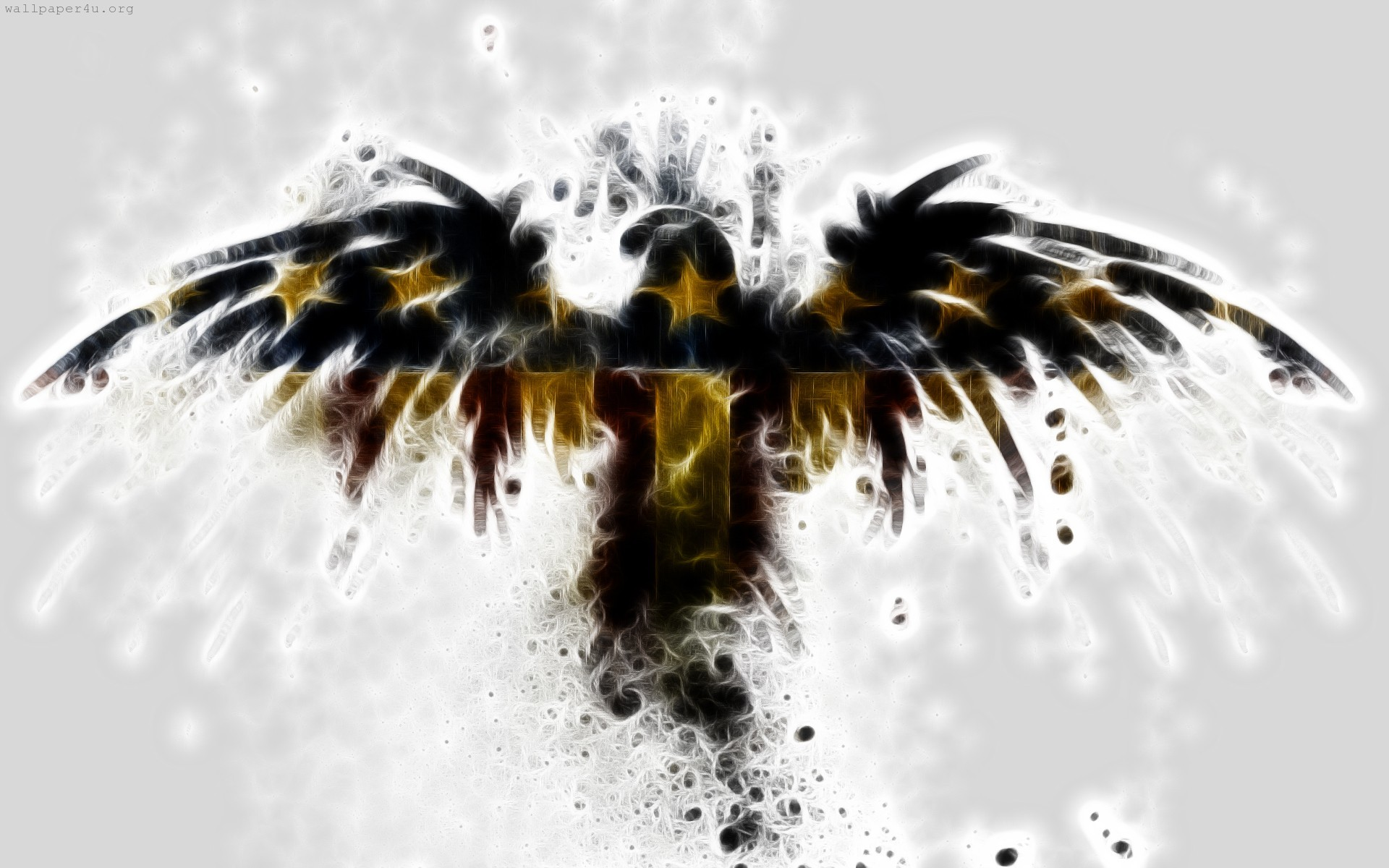 Eagle Wallpapers Download Eagle HD Wallpapers for Free GuoGuiyan 1920×1200