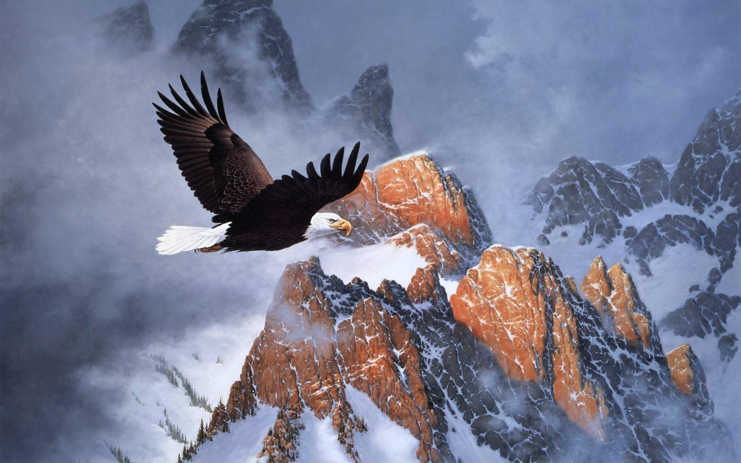 bald eagle and flag pics
