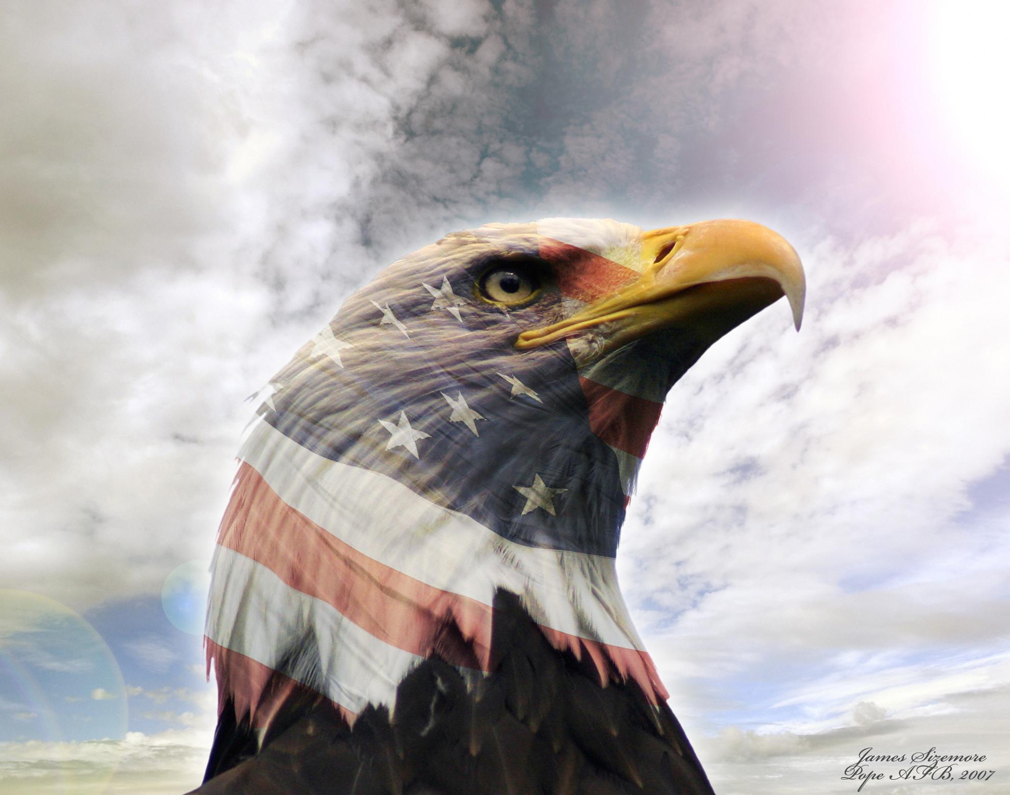usa eagle wallpaper download -#main