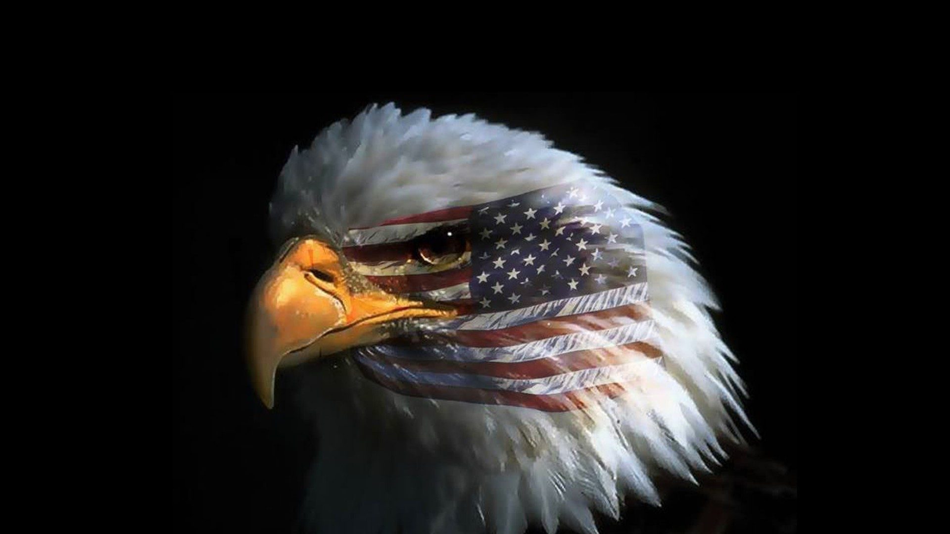 65 American Flag With Eagle