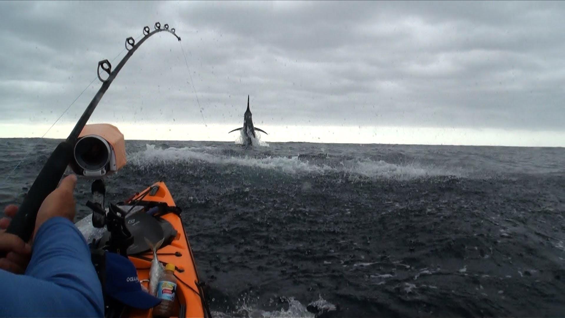 58 Saltwater Fishing