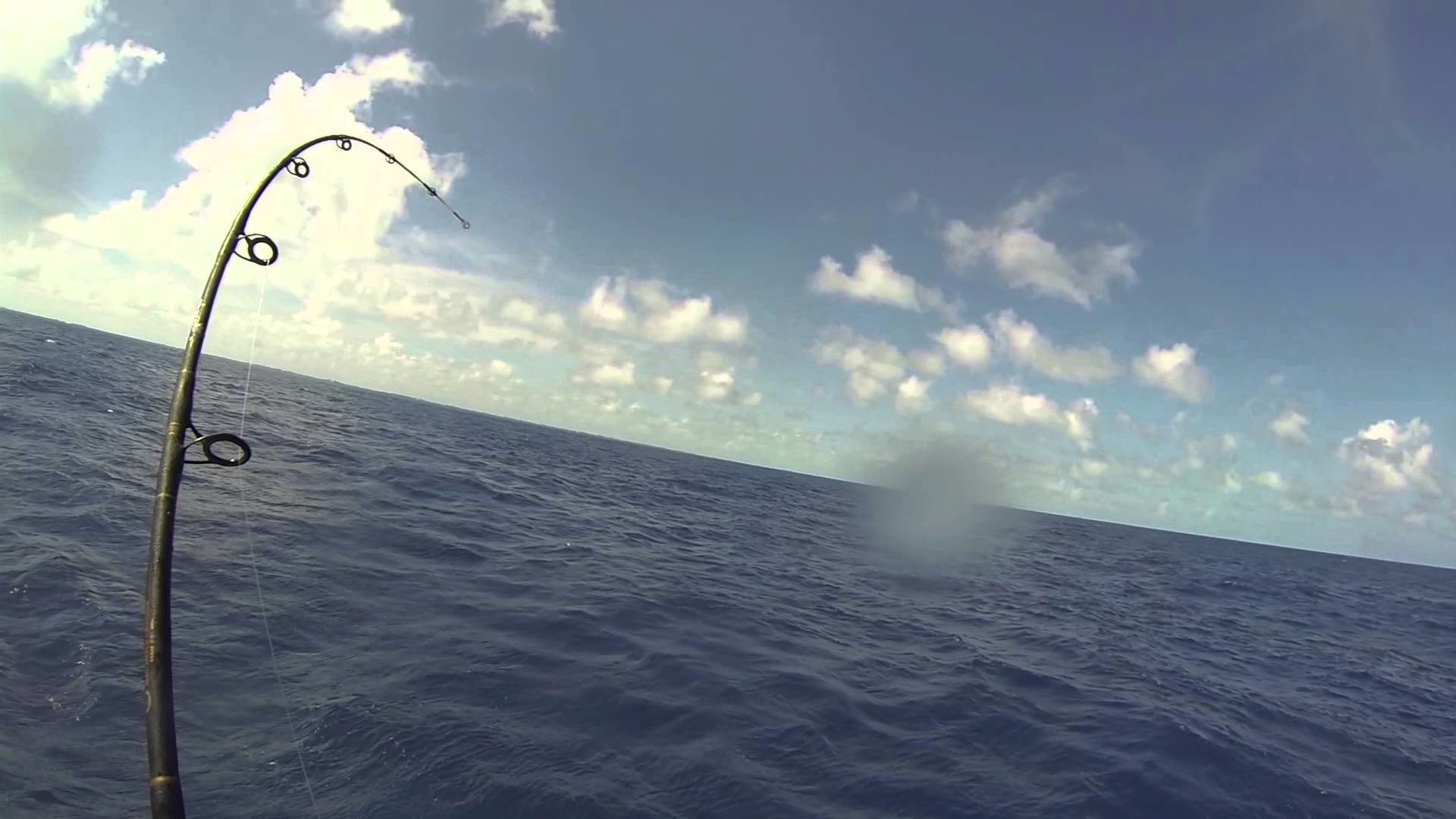 GoPro Saltwater fishing for Sailfish in Islamorada Florida
