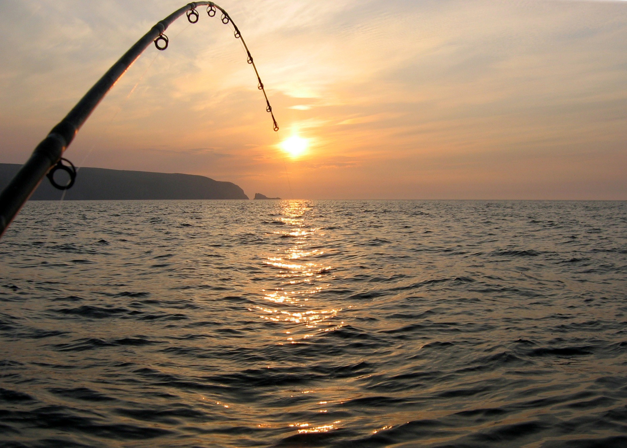 Bass Fishing Wallpapers Android Apps on Google Play