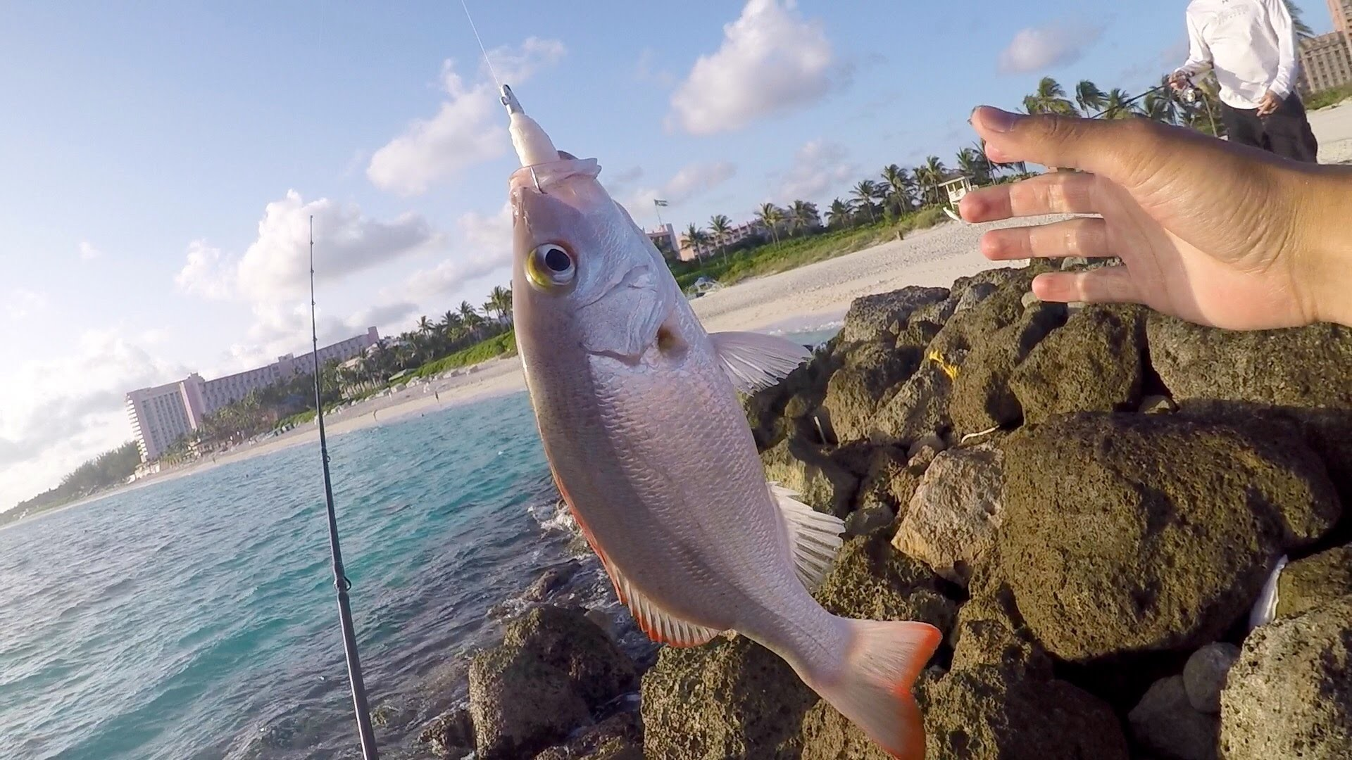 Saltwater Fishing gets me HYPED!!! Beach Fishing in the Bahamas – YouTube