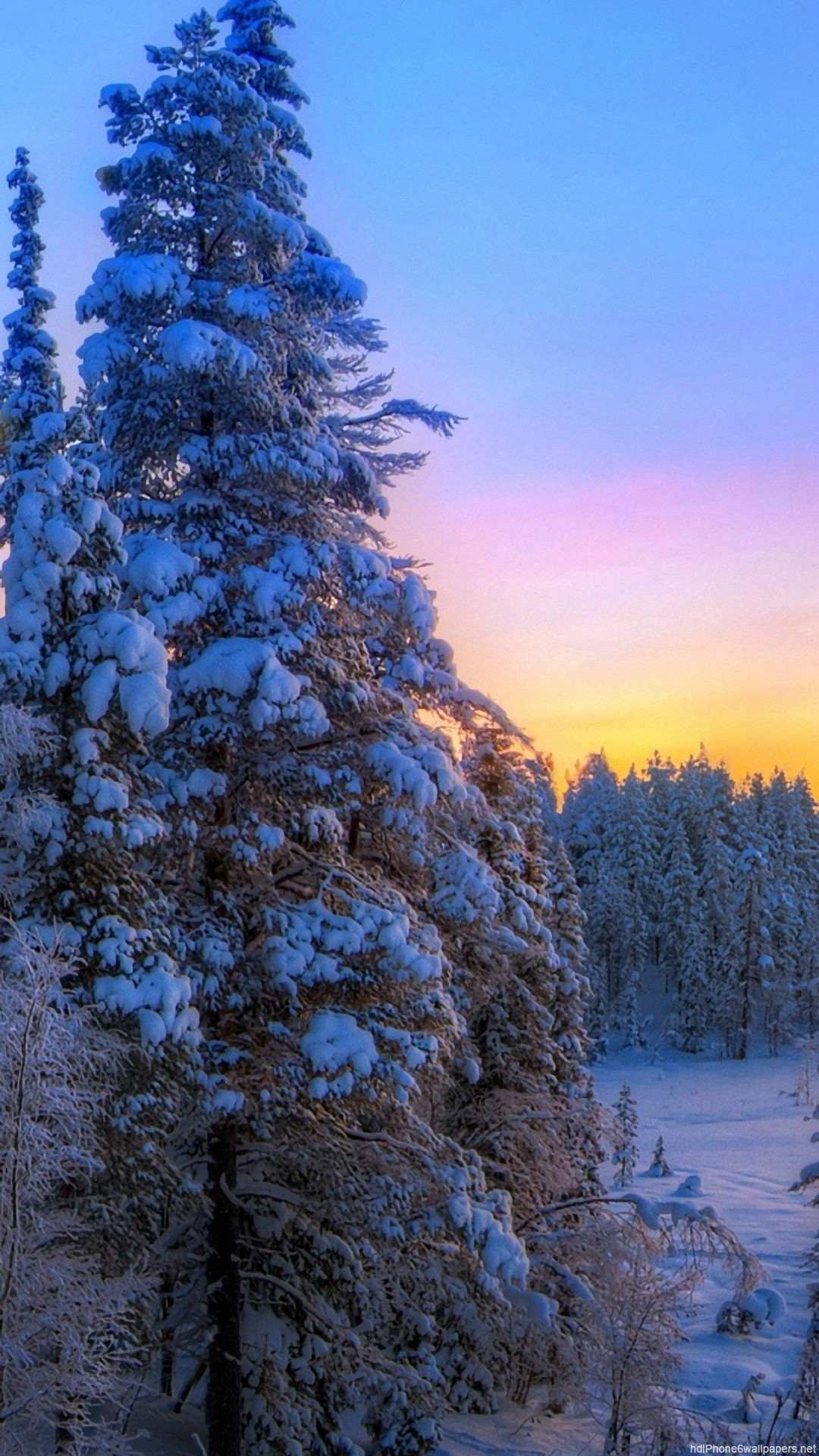 tree winter sunset landscape iPhone 6 wallpapers HD – 6 Plus  backgrounds
