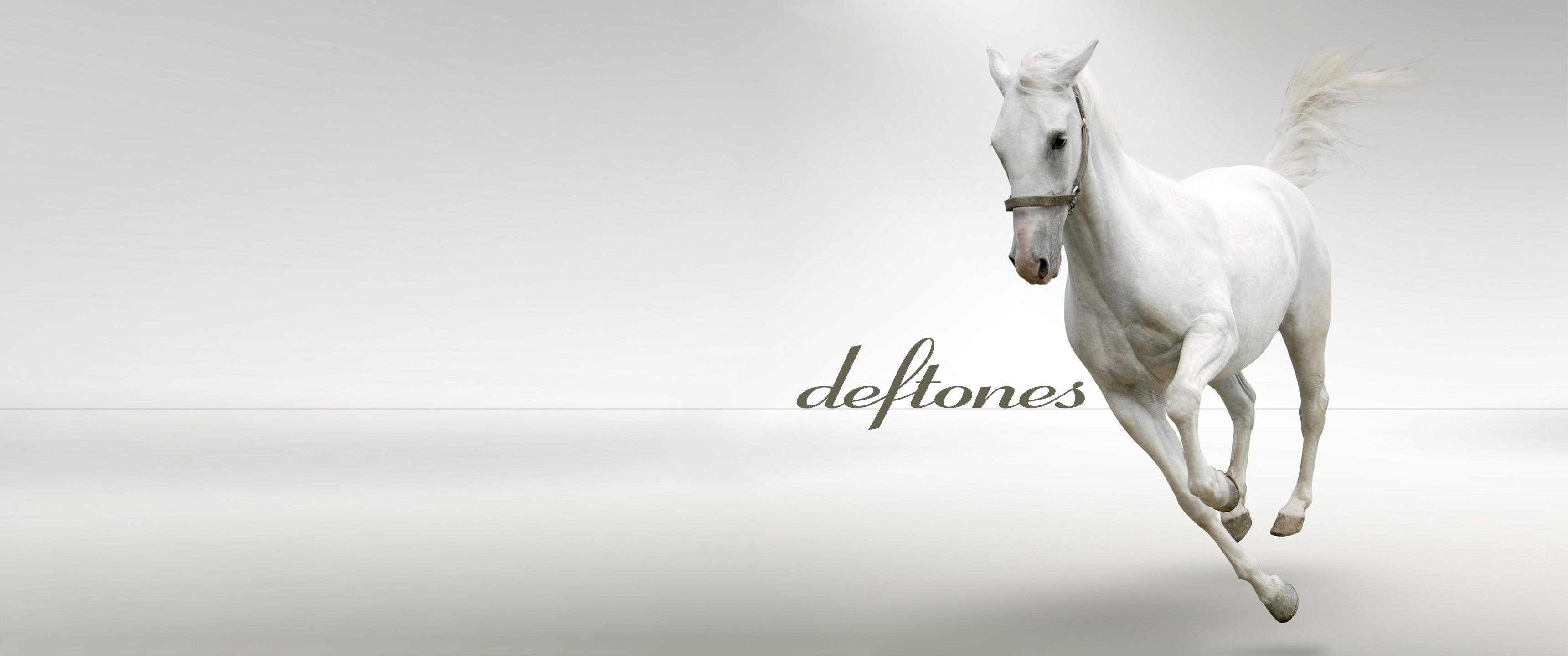 Another ultrawide Deftones wallpaper. Enjoy!