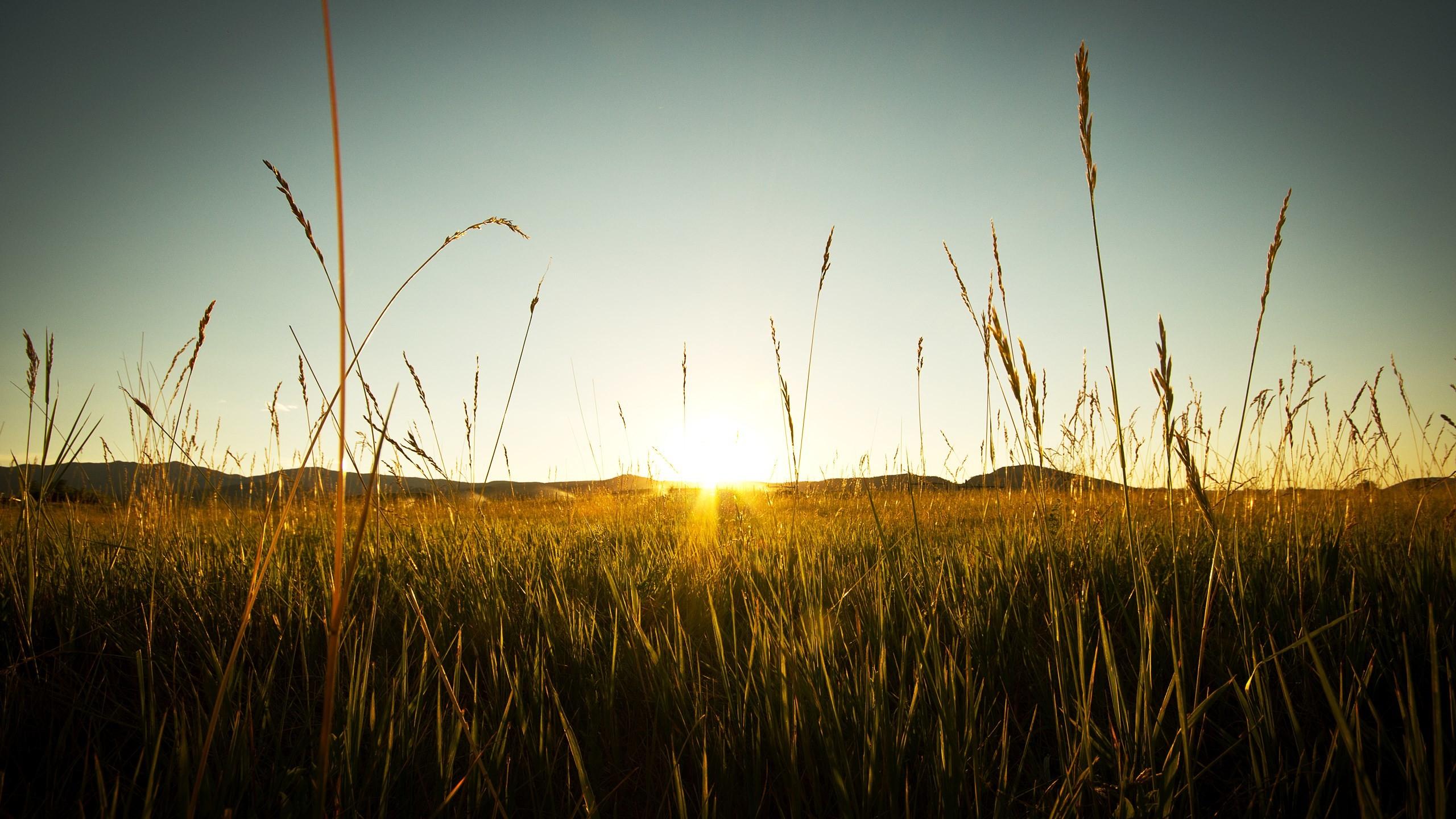 px HD Widescreen Wallpapers – sunbeam backround by Langham Thomas  for : pocketfullofgrace.com