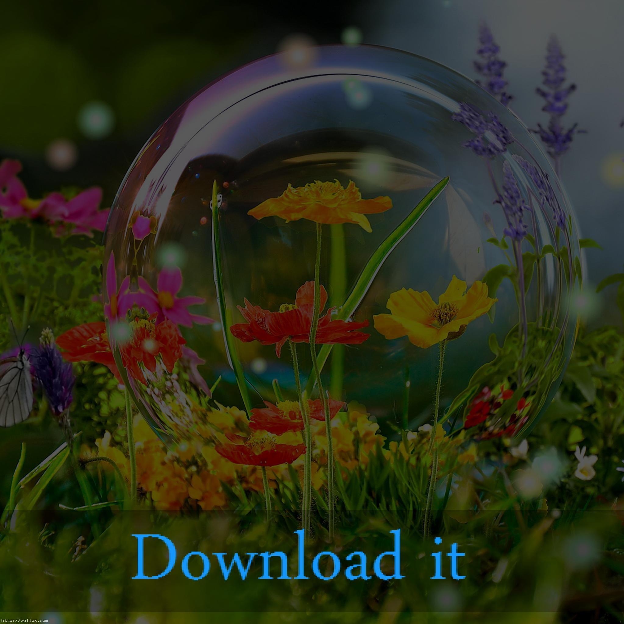 Aquarium Live Wallpaper For Windows Xp Free Download : Live wallpaper  1366×768 wallpaper hd