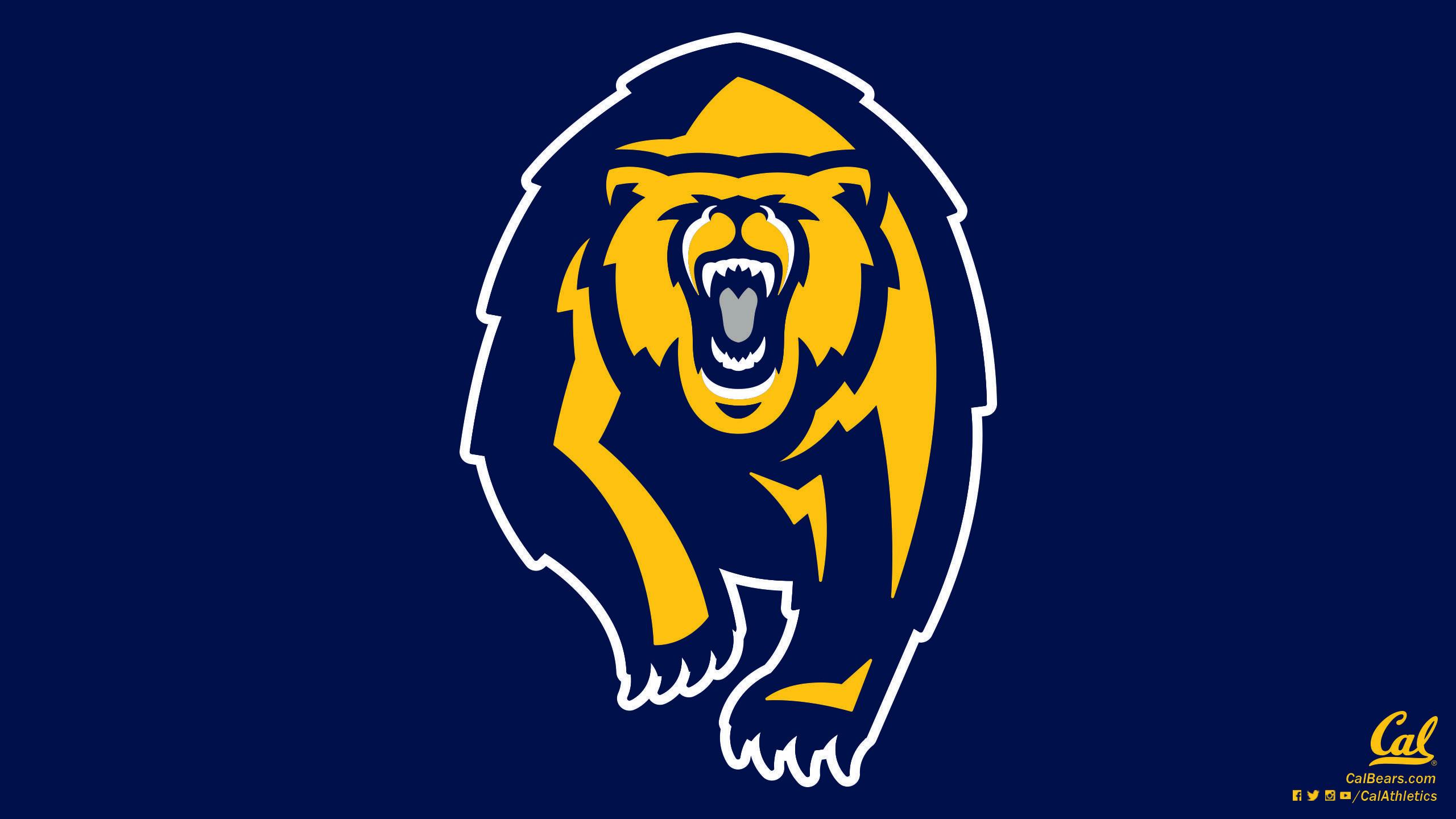 California Golden Bears – Wallpapers – California Golden Bears .