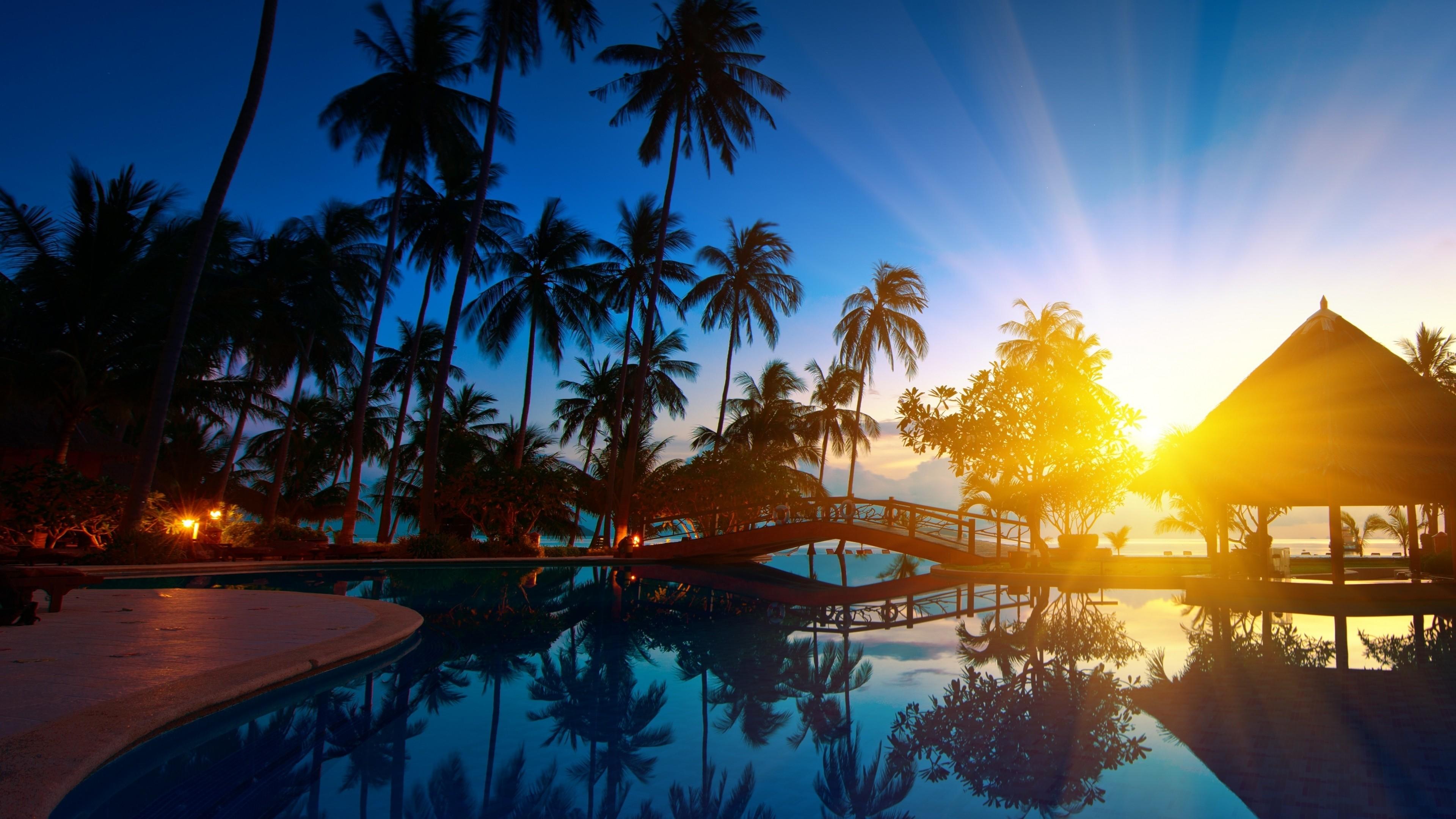 … Background 4K Ultra HD. Wallpaper sunrise, thailand,  paradise, trees, sea water, palm trees,
