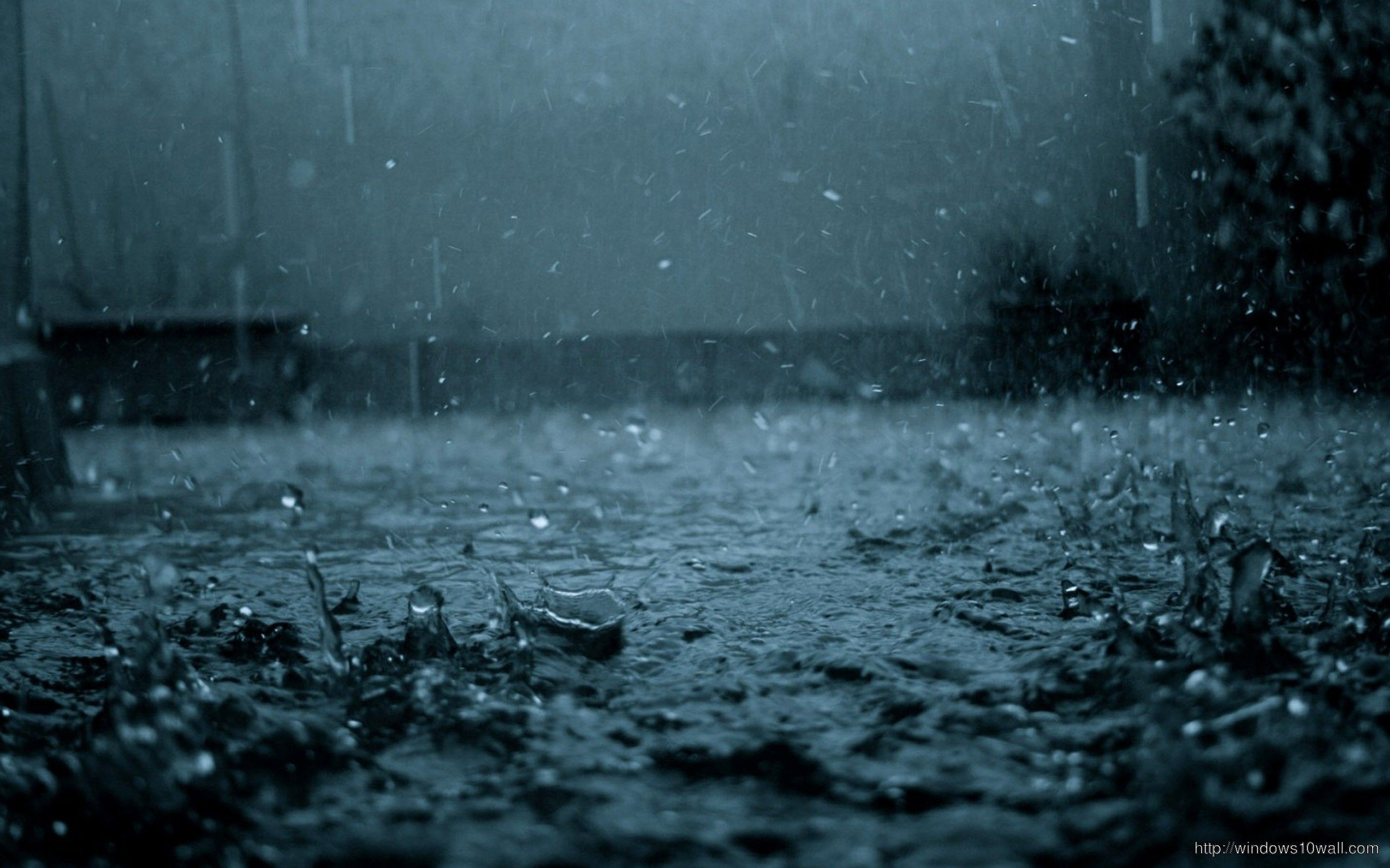 Rain Drops Hd Wallpaper