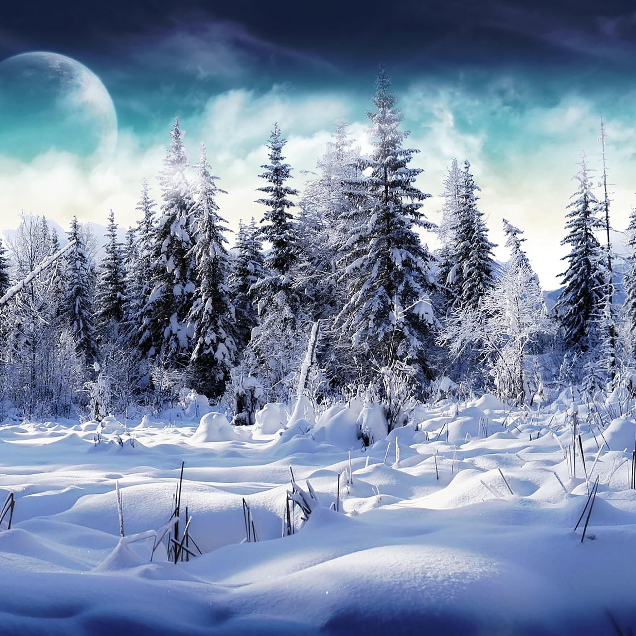Winter iPad Wallpaper 20