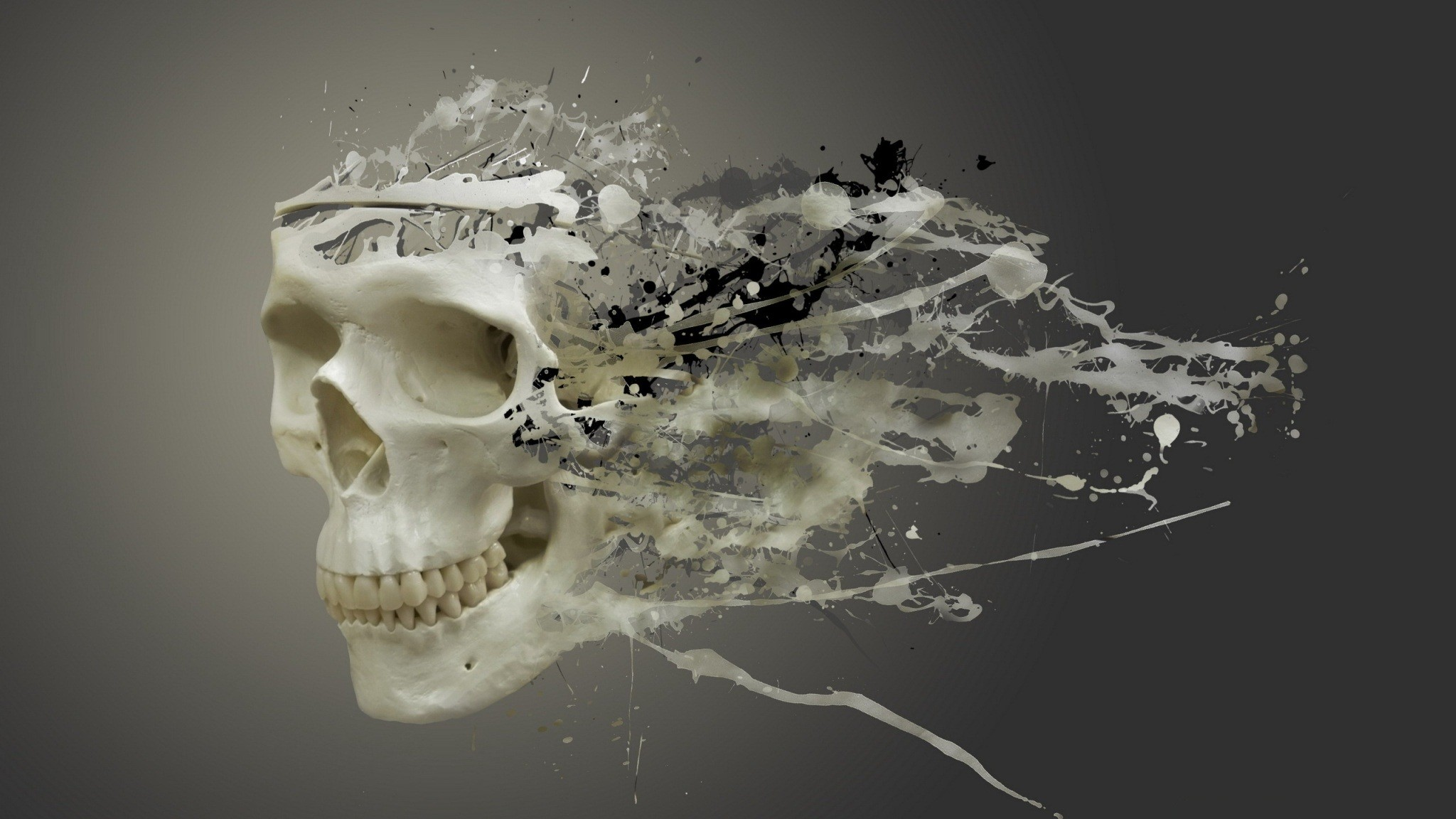 Disintegrating Skull by hridoy74. This would make an amazing tattoo.