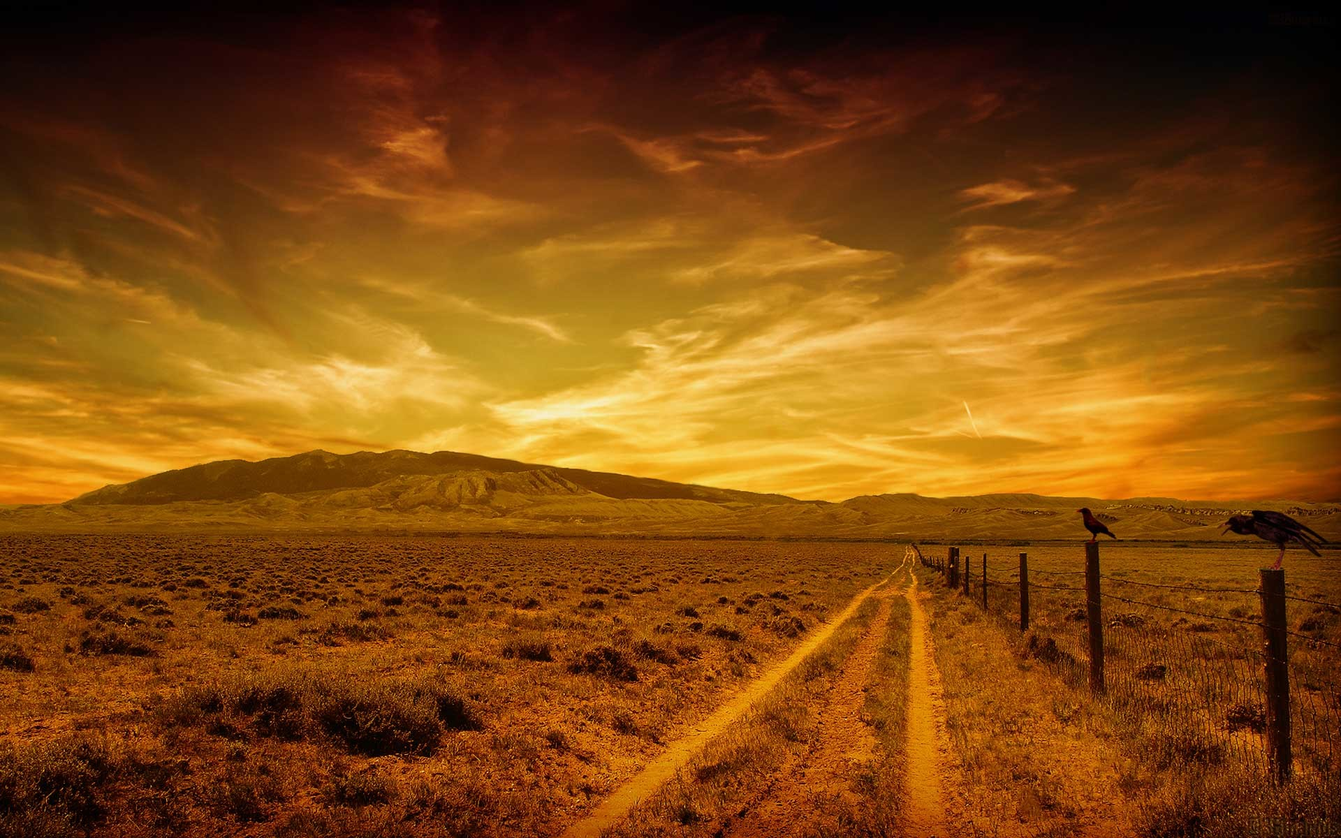 Free Wallpapers – Road To Hell wallpaper