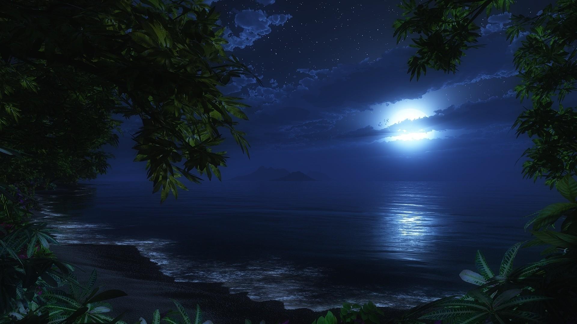 Cg Digital Art Nature Ocean Beaches Waves Sky Night Trees Tropical Jungle  Wallpaper At 3d Wallpapers
