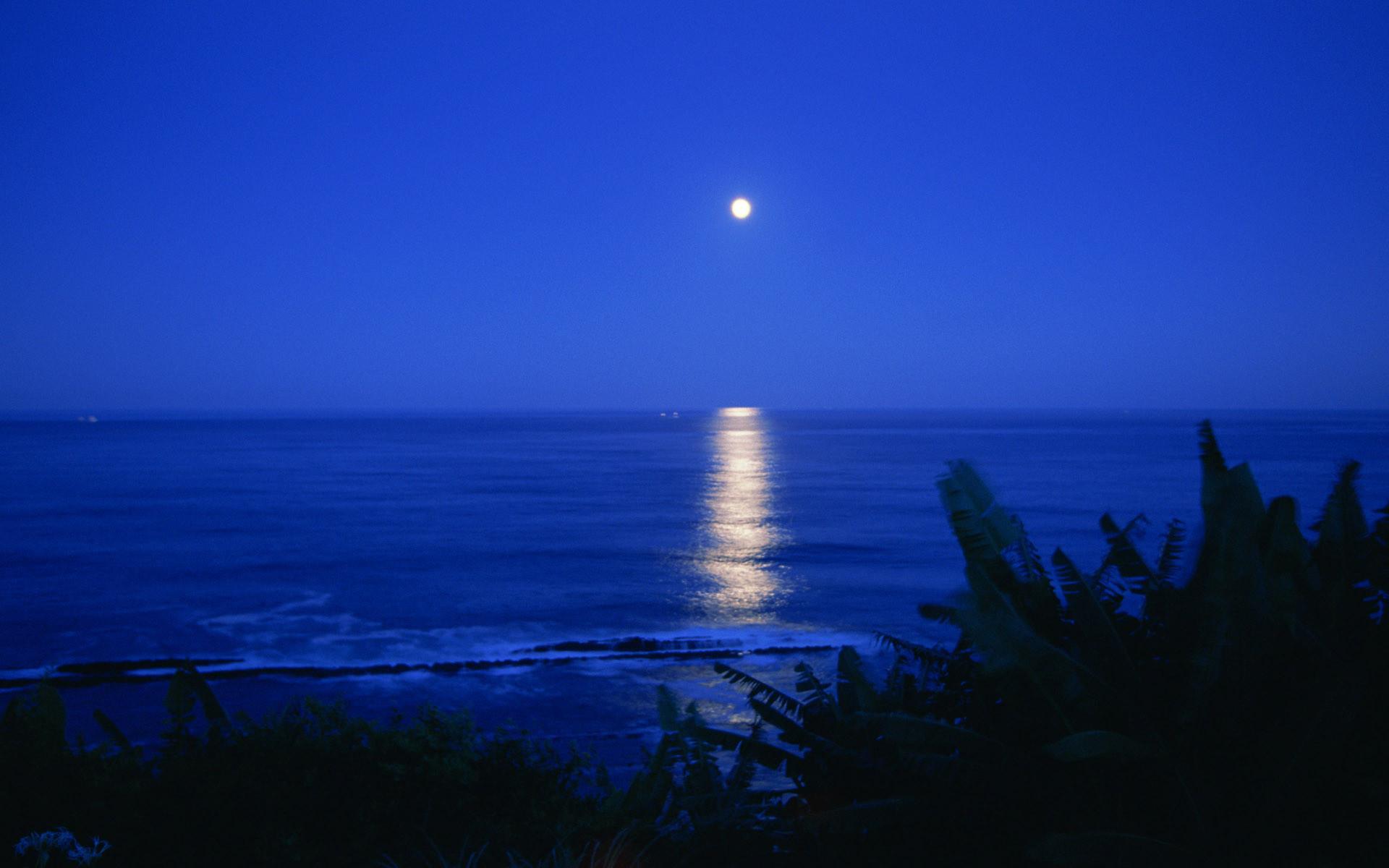 Night sea moon ocean reflection wallpaper     135940   WallpaperUP
