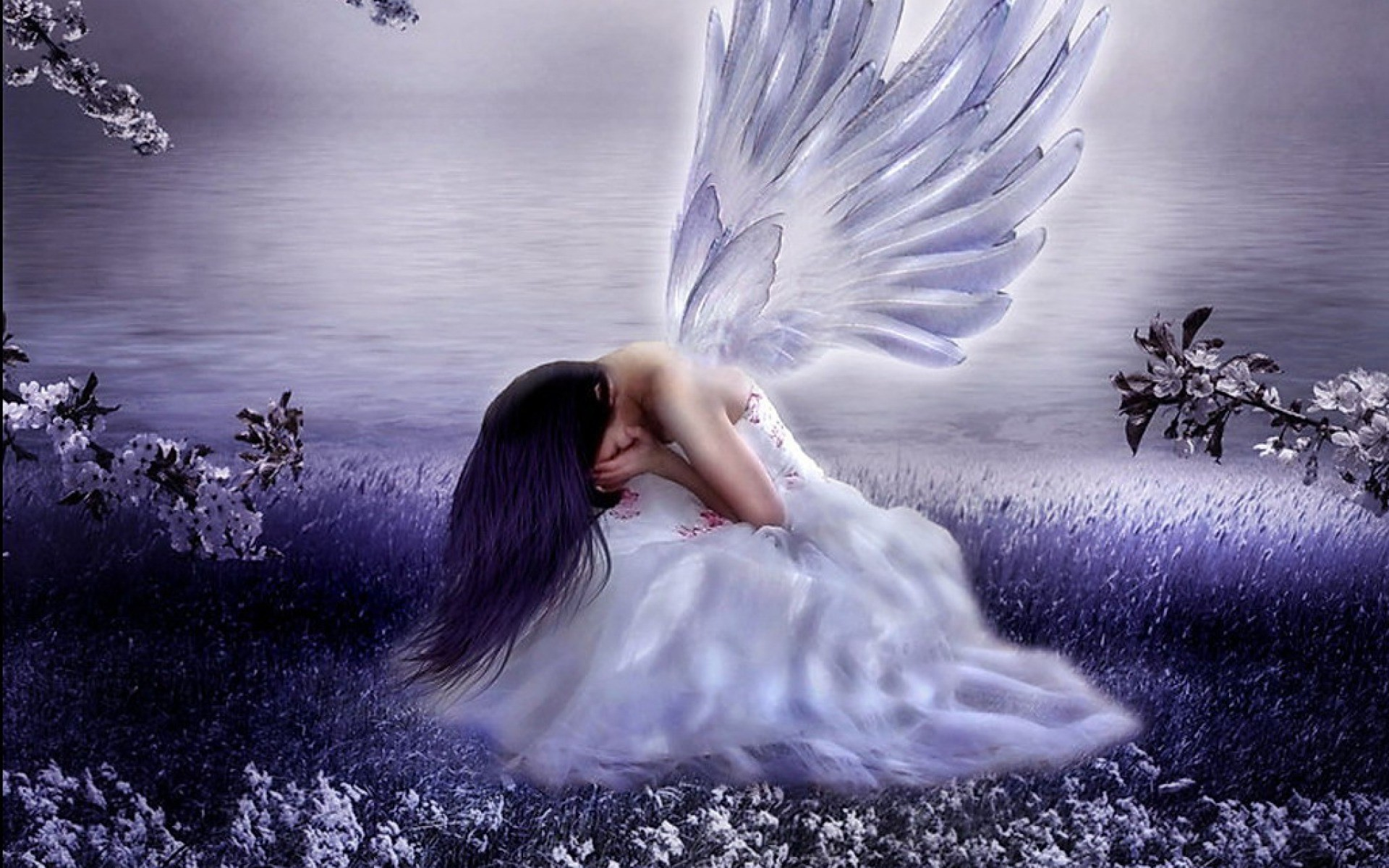 angel wallpapers free