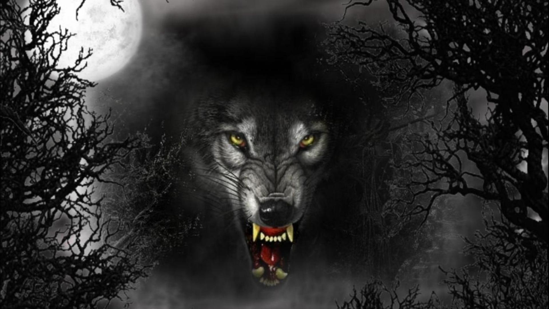 evil wolves   Cruel Wolf, dark, evil, eyes, full moon, vicious