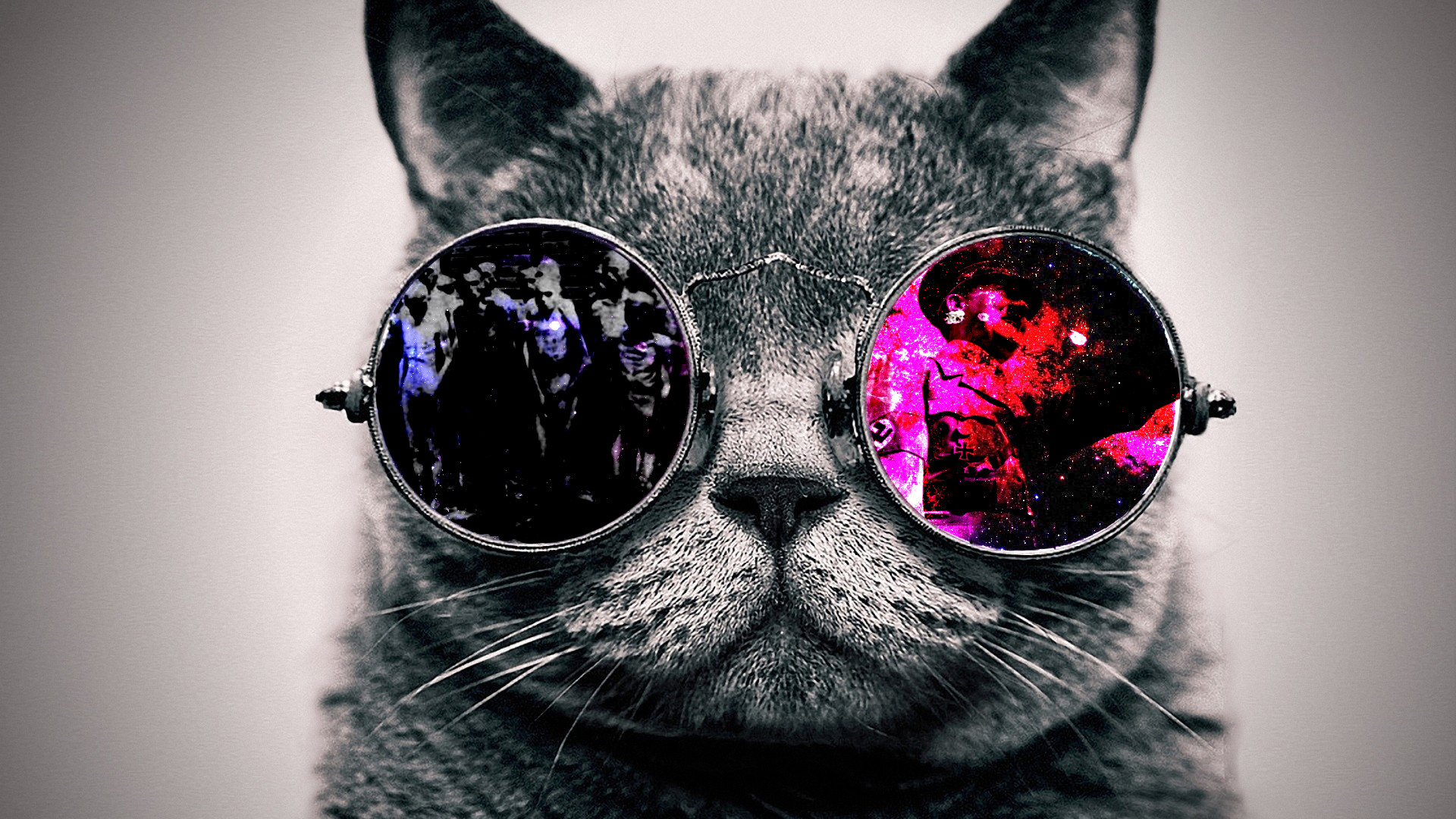 Cool Cat [1920×1080] Need #iPhone #6S #Plus #Wallpaper/ #Background for  #IPhone6SPlus? Follow iPhone 6S Plus 3Wallpapers/ #Backgrounds Must to Have…