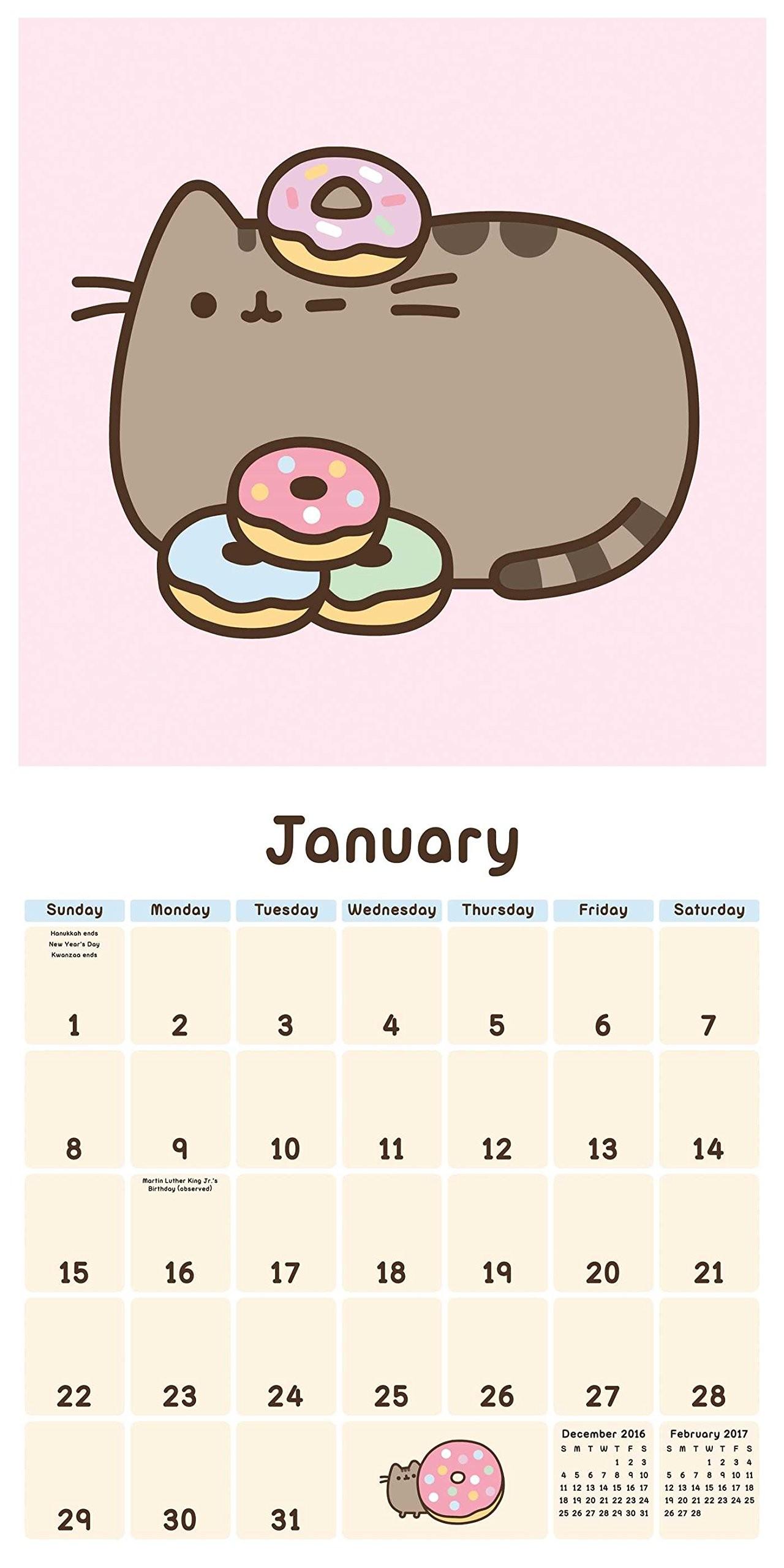 Pusheen the Cat 2017 Wall Calendar: Claire Belton: 0050837355569:  Amazon.com: Books