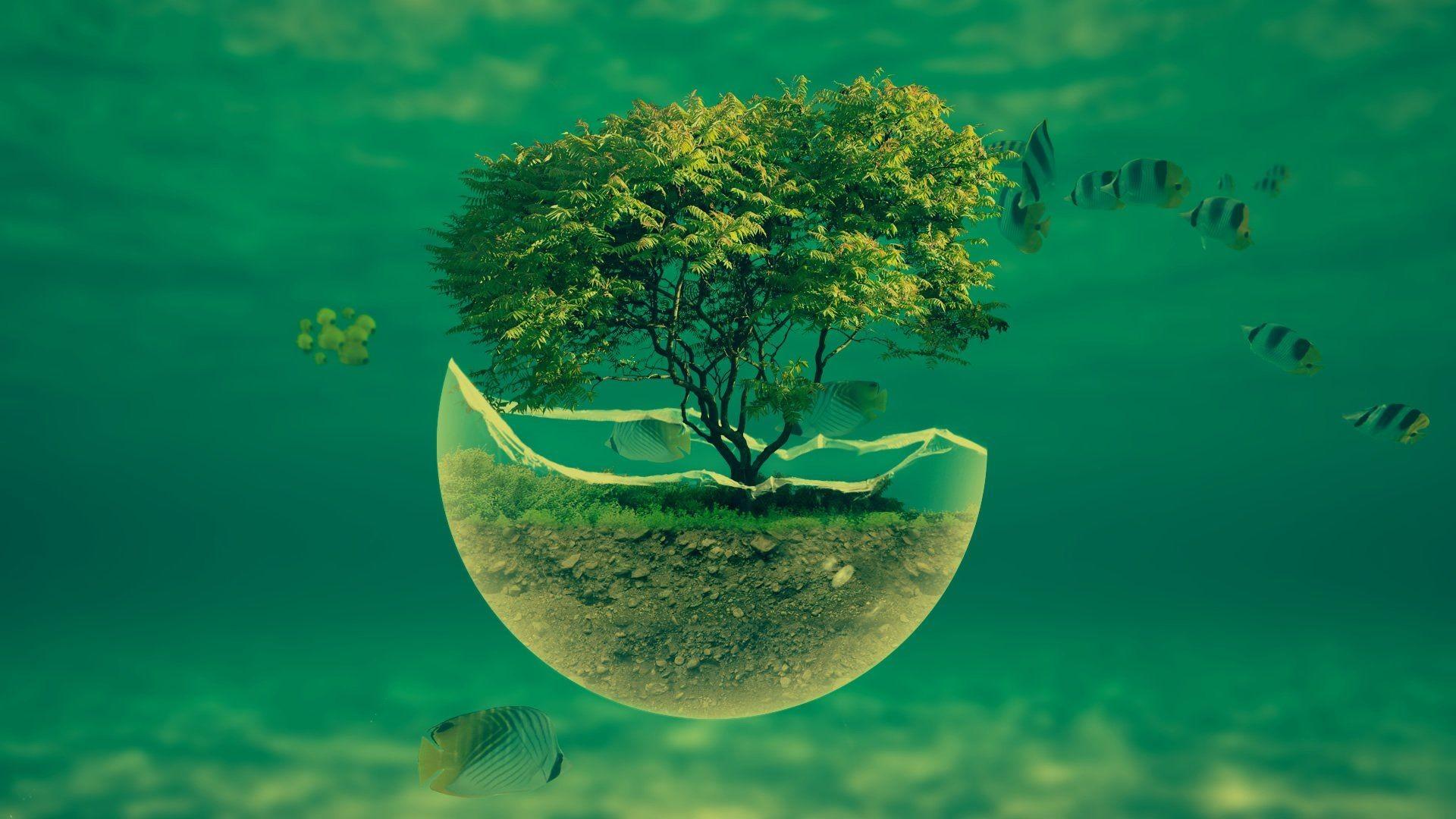 … 1188_3d_abstract Underwater Tree Widescreen Hd Abstract Desktop  Wallpaper. Download