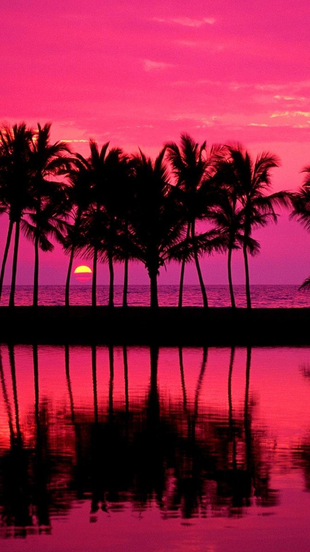 Tumblr Palm Trees Girly Pink Iphone Plus Wallpaper Tumblr Iphone .