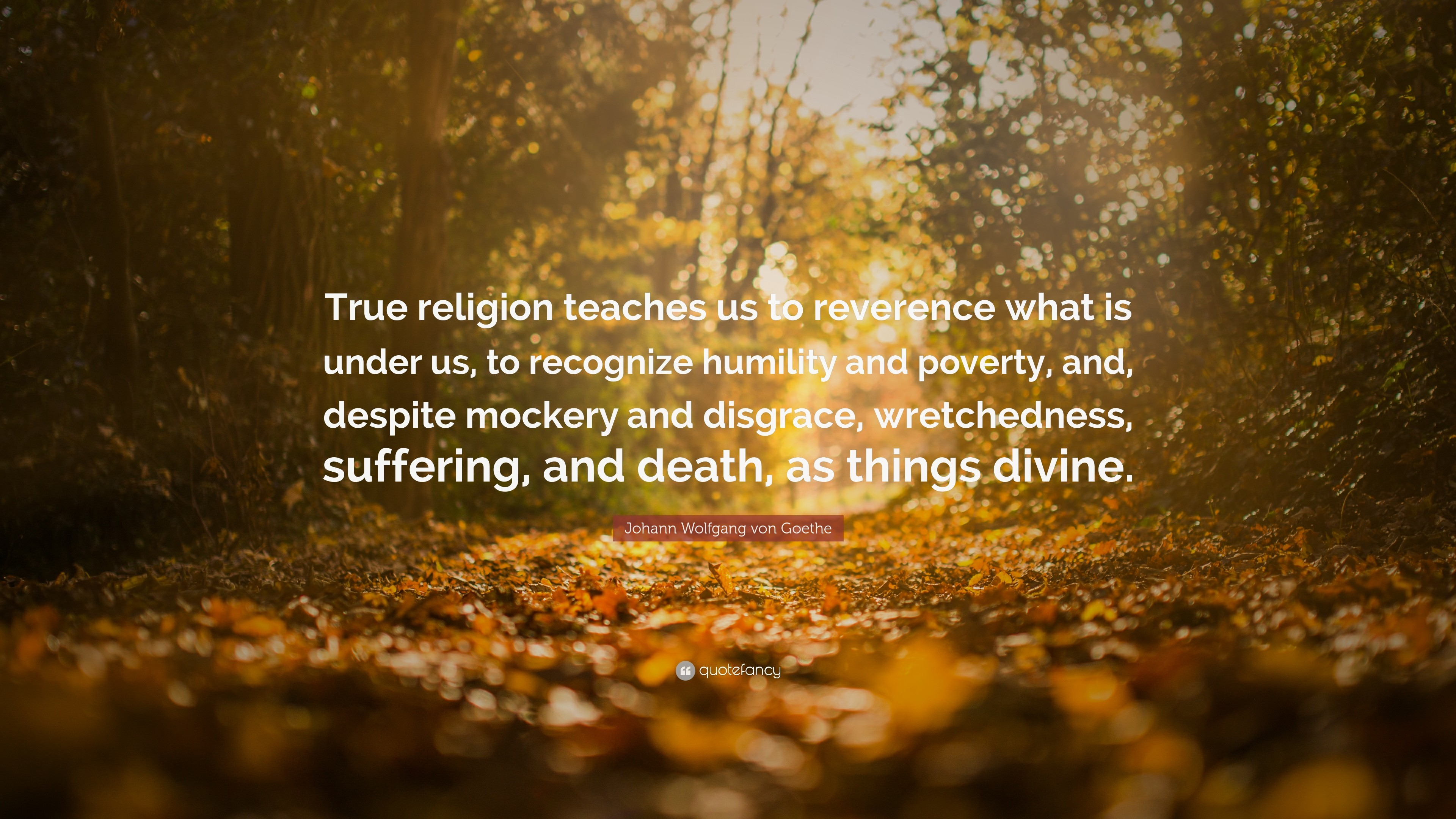 """Johann Wolfgang von Goethe Quote: """"True religion teaches us to reverence  what is under"""