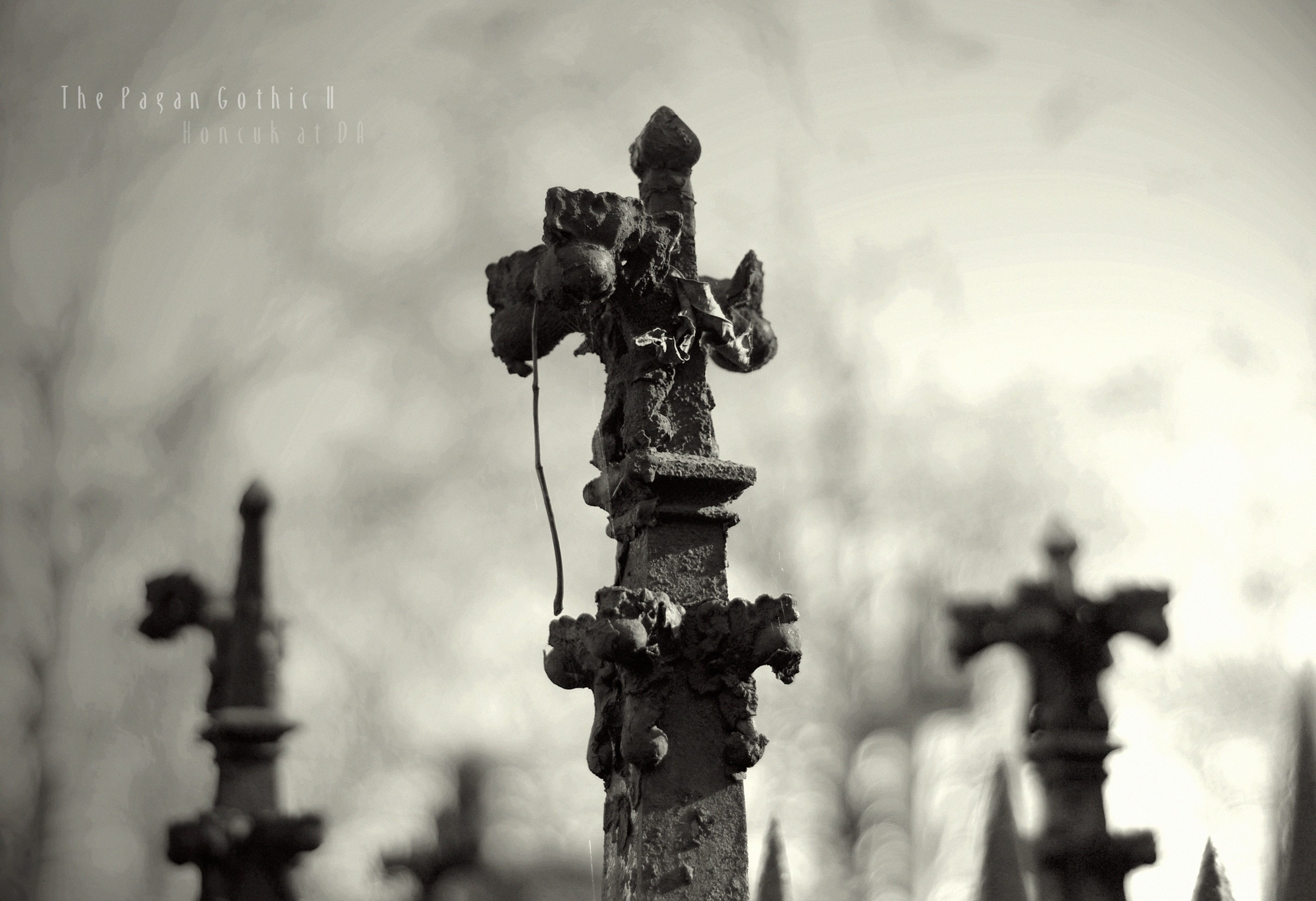 Pagan Occult Witch Cemetery Black White Gothic Dark Wallpaper At Dark  Wallpapers