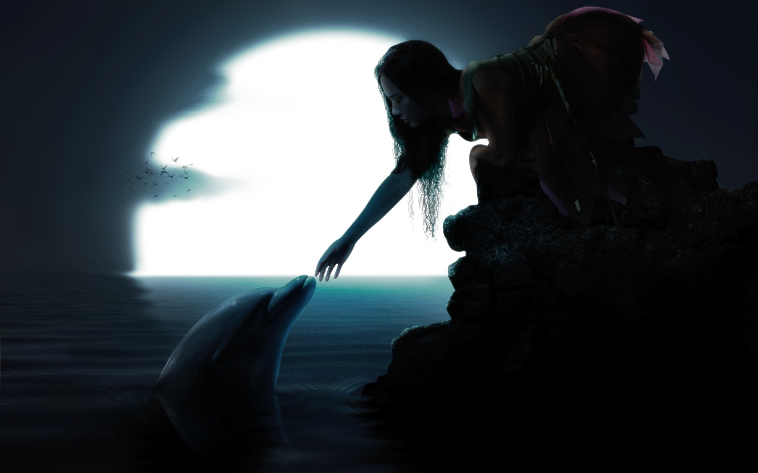 Moon birds dolphins long hair water wallpaper (#2463651) / Wallbase.cc