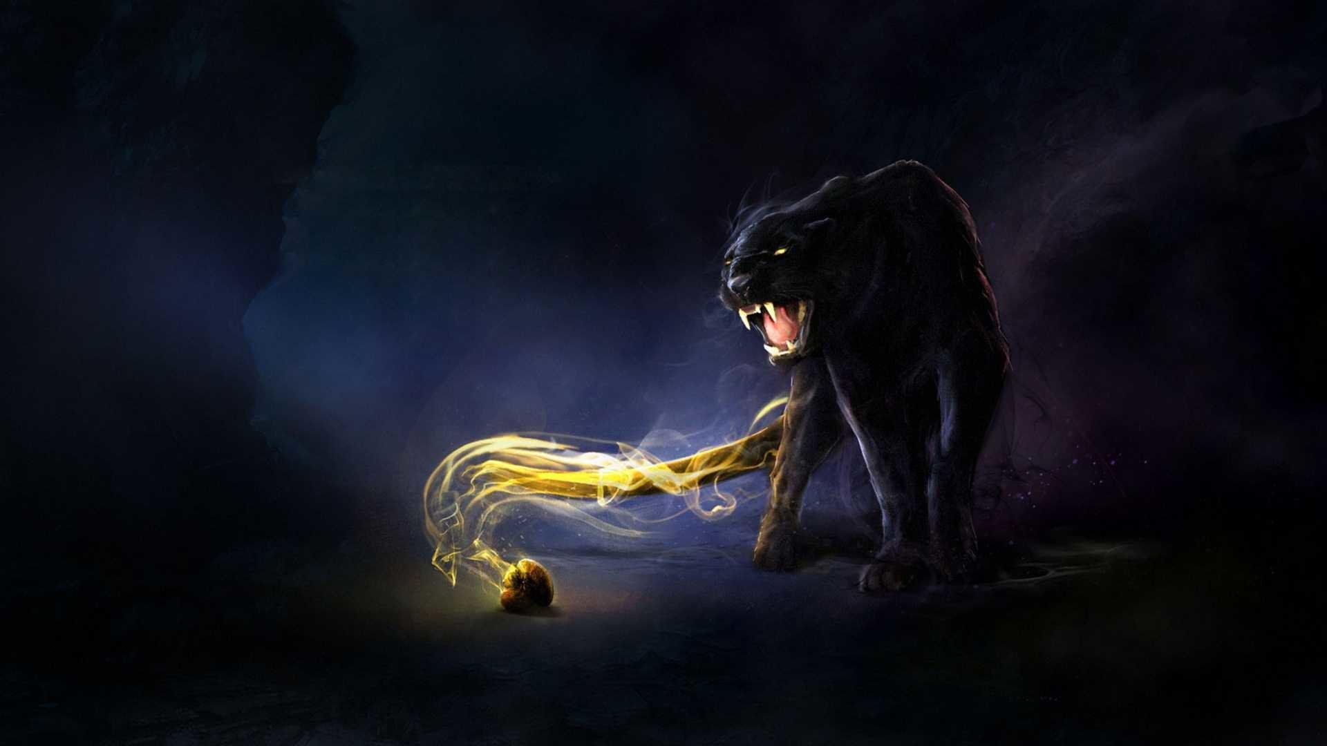 black jaguar blue eyes wallpaper high quality for desktop wallpaper  background on animal category similar with
