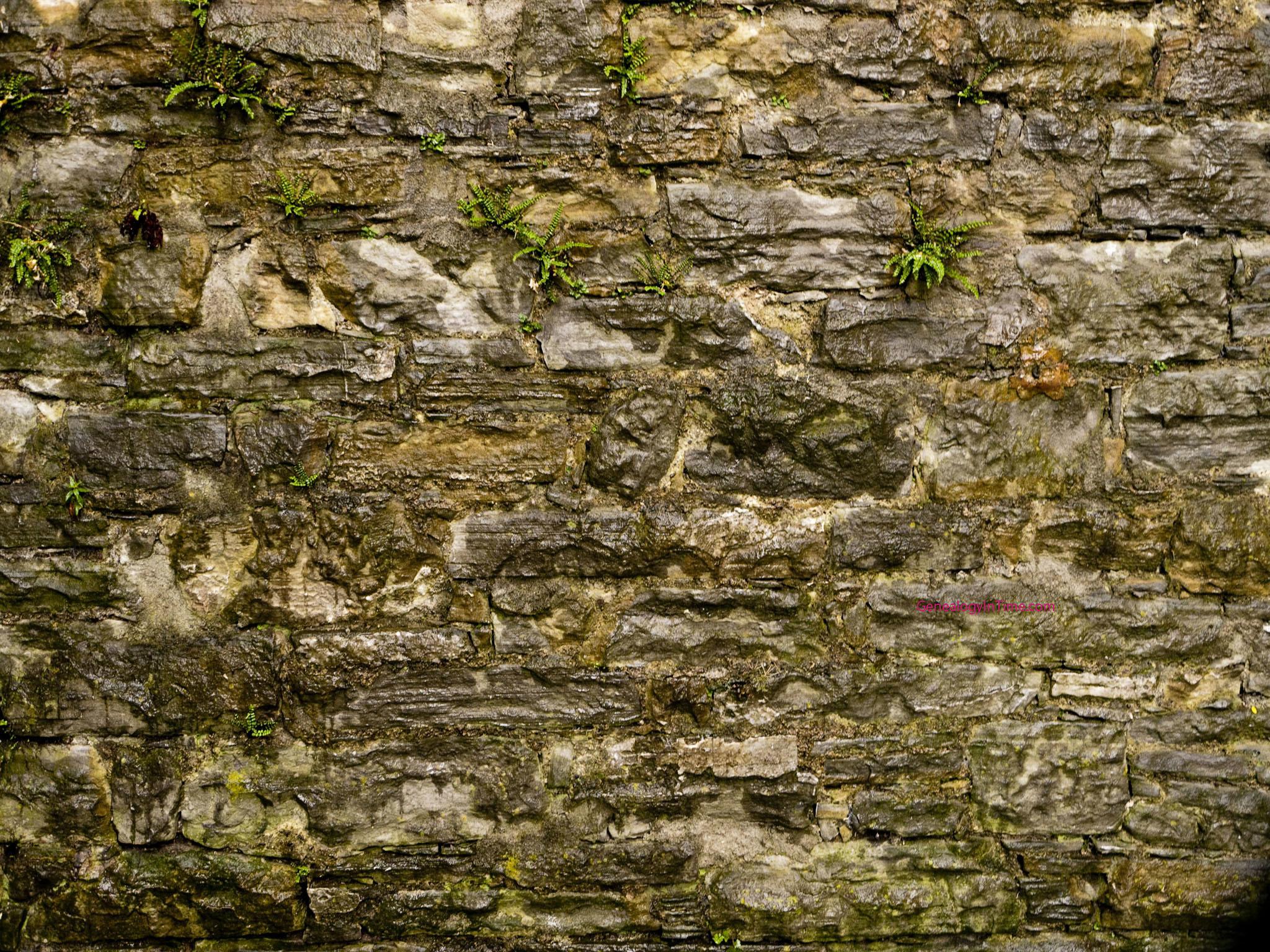 Medieval Wallpaper For Walls