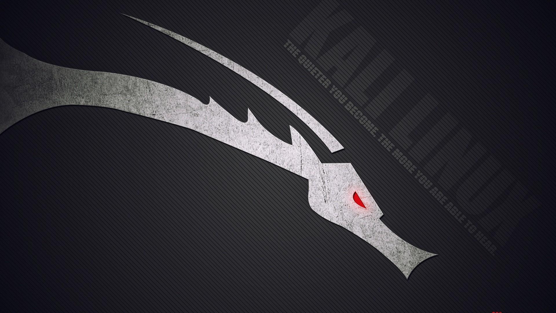 Kali Linux Desktop Pc And Mac Wallpaper Pictures