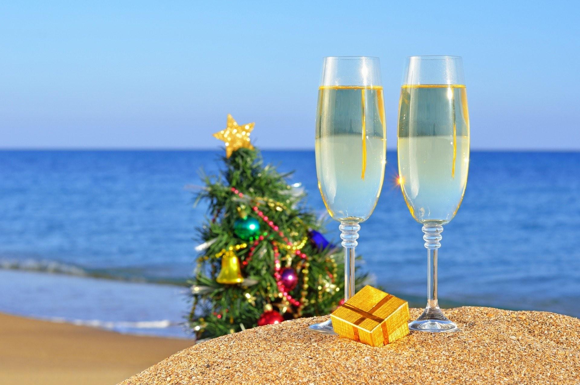 sand new year beauty beach cups ocean summer present christmas tree sea sea  christmas tree cups
