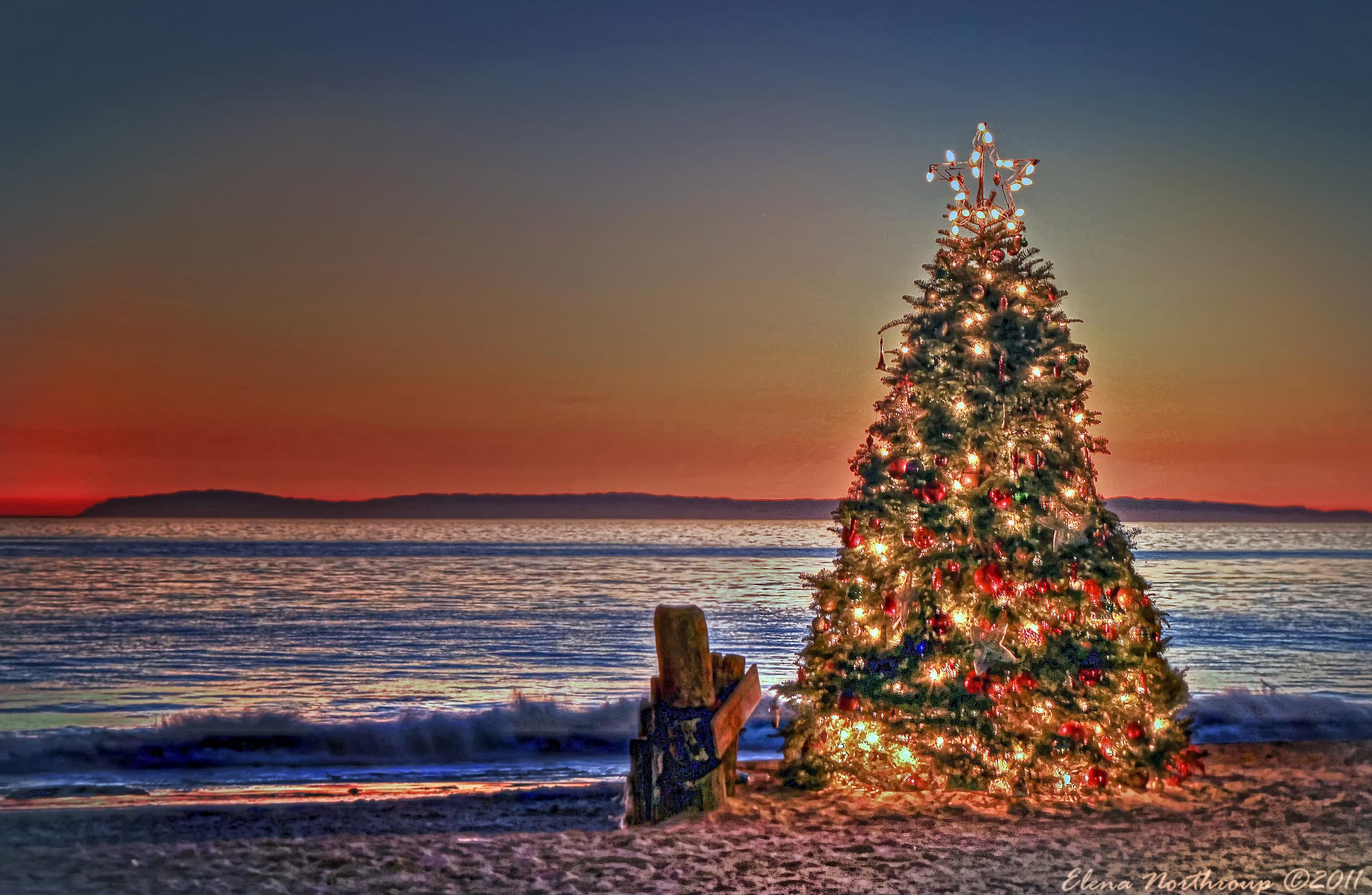 Good Christmas Tree At The Beach Part – 8: Christmas At The Beach