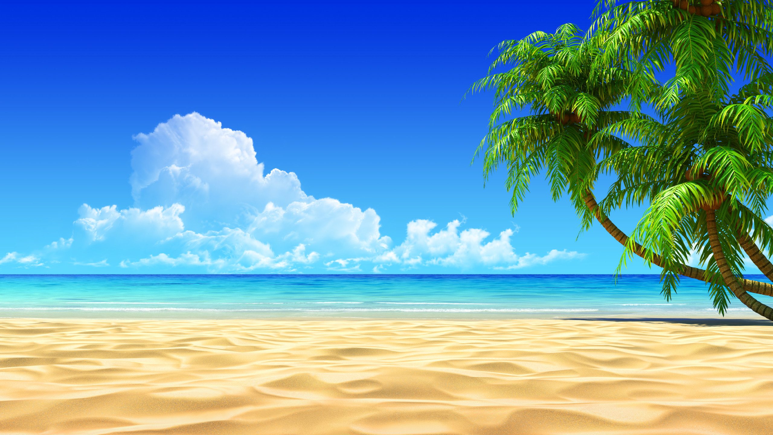 Breath Taking Tropical Beach HD desktop wallpaper : Widescreen : High  Definition : Fullscreen : Mobile : Dual Monitor