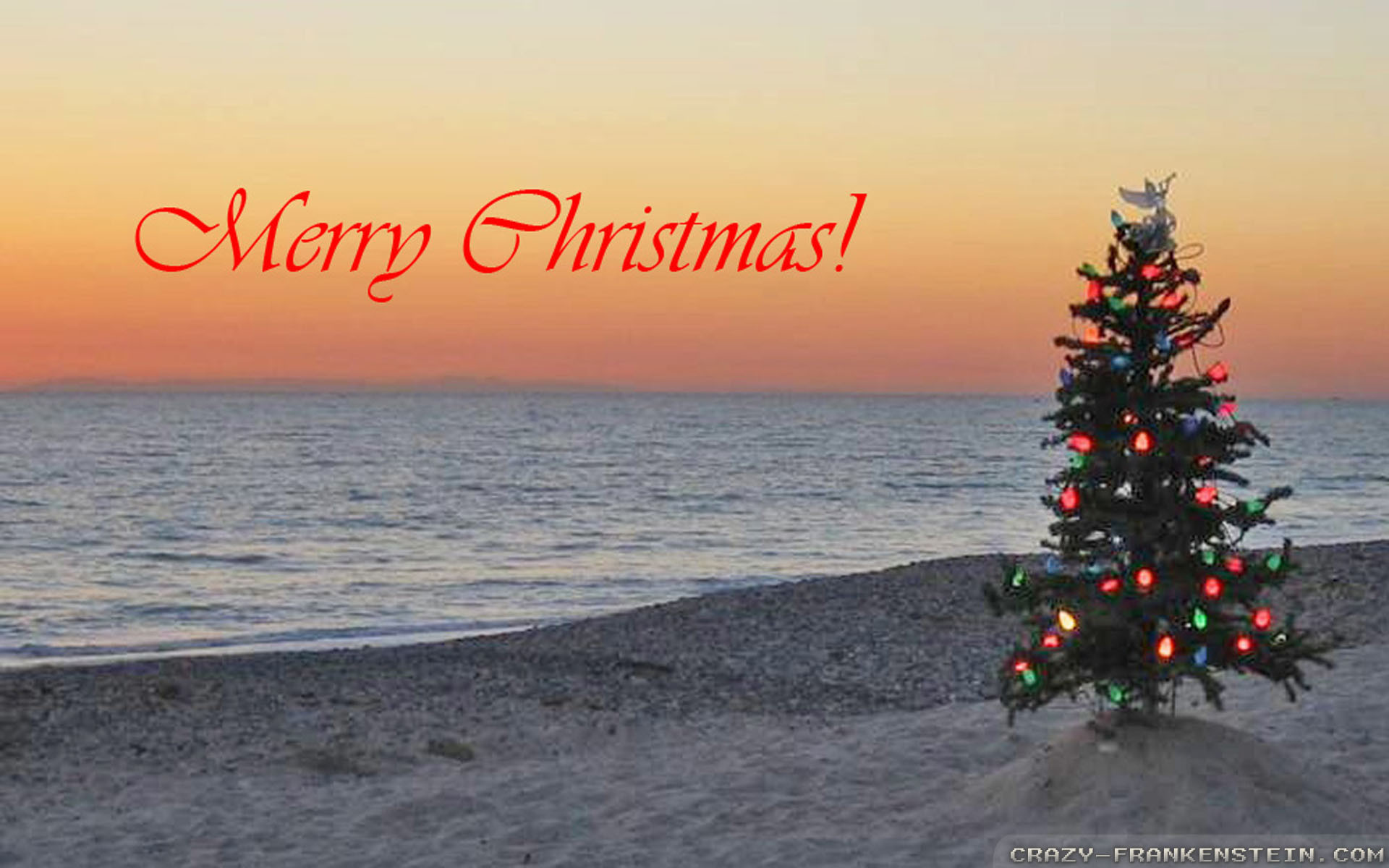 Wallpaper: Christmas treeon beach island wallpapers. Resolution: 1024×768 |  1280×1024 | 1600×1200. Widescreen Res: 1440×900 | 1680×1050 | 1920×1200