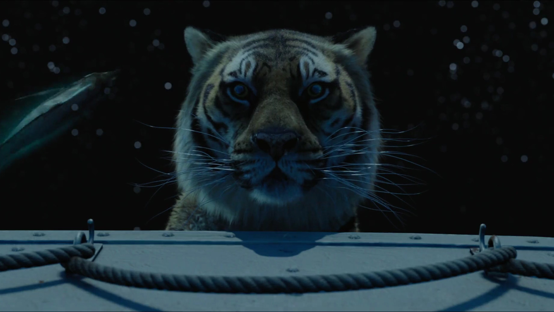| Life Of Pi Wallpapers | Kristopher Nolf