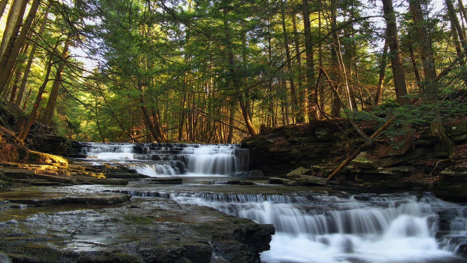 Trough Tag – Park Springs Spring Sky Rock Forest Pennsylvania Nature  Waterfall Sunshine State Trough Salt