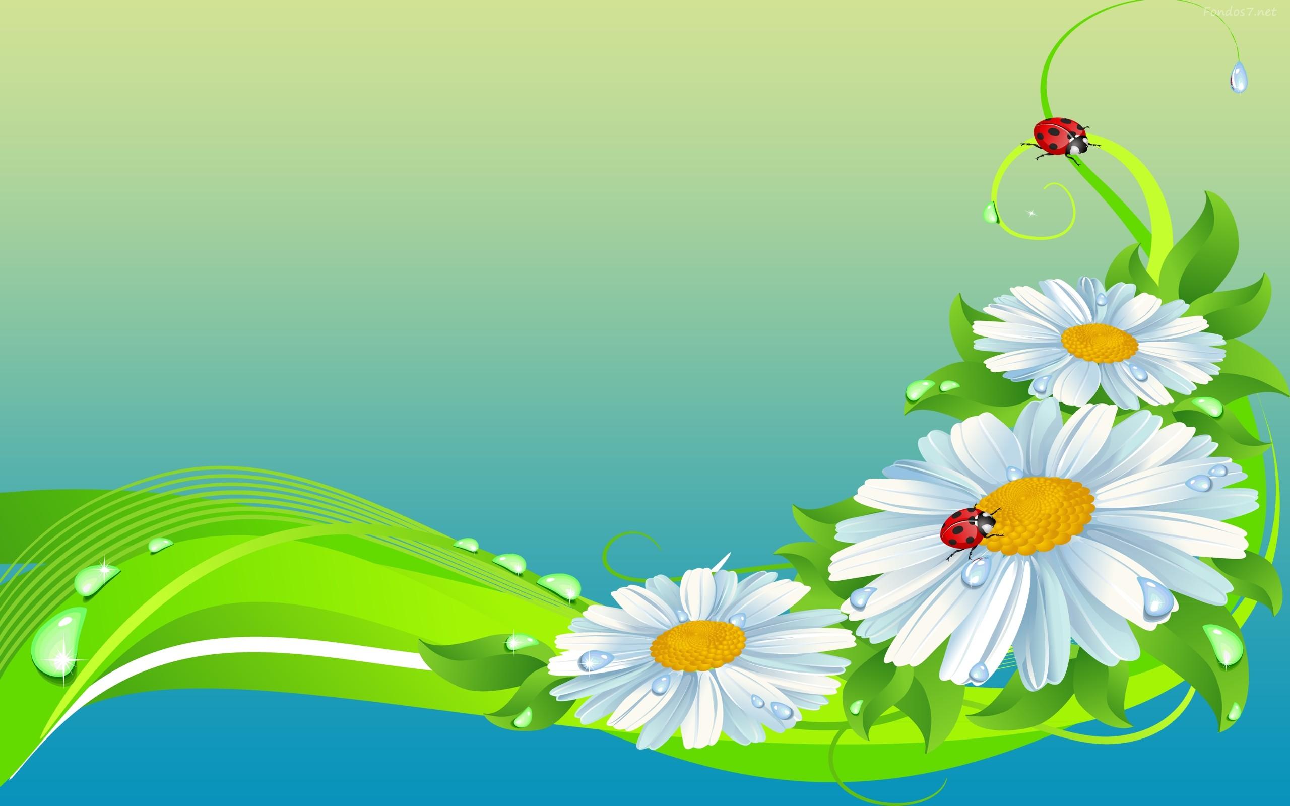 de pantalla flores coloridas hd widescreen Gratis imagenes #3262 .