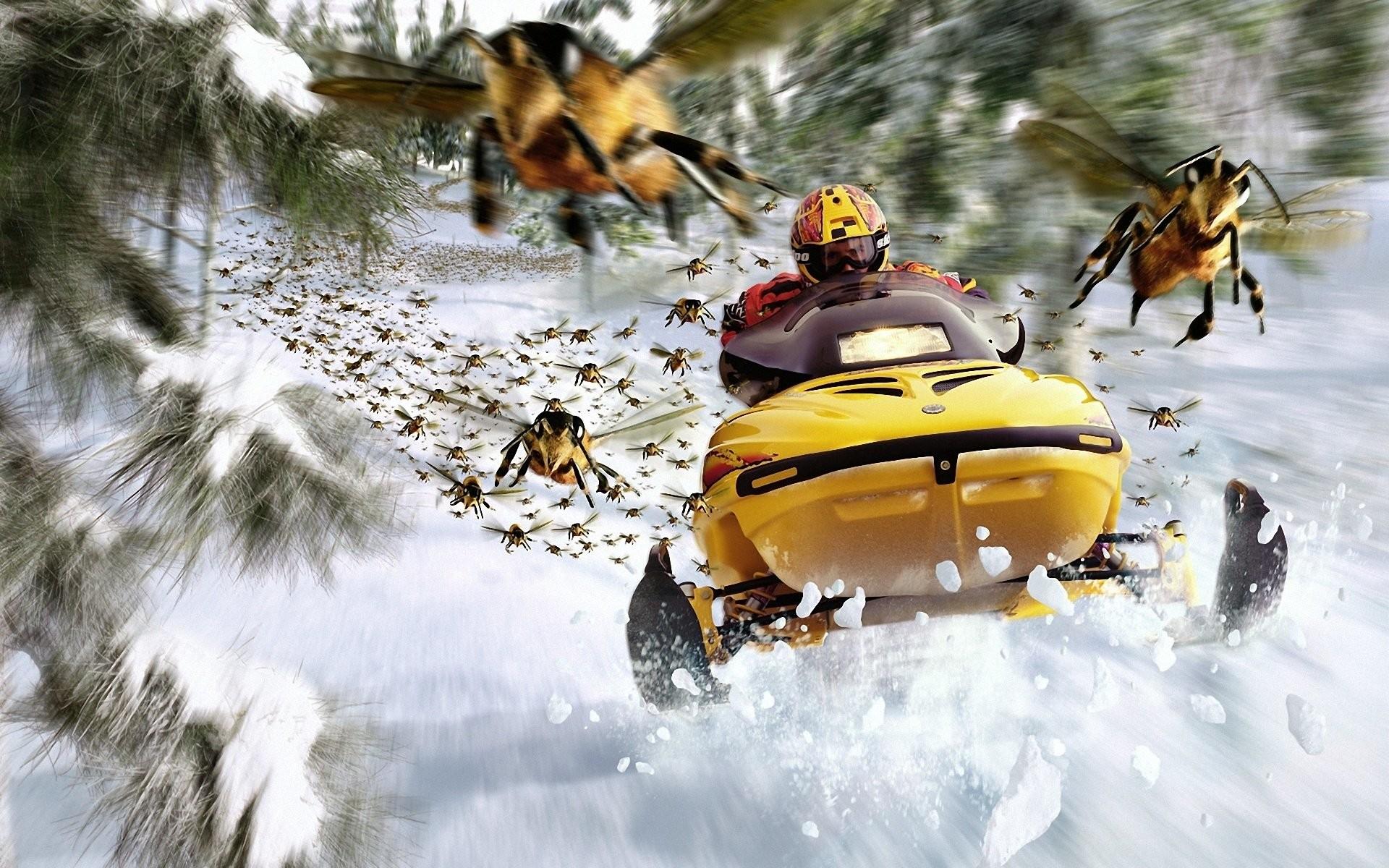 Vehicles – Snowmobile Snow Mobile Wallpaper