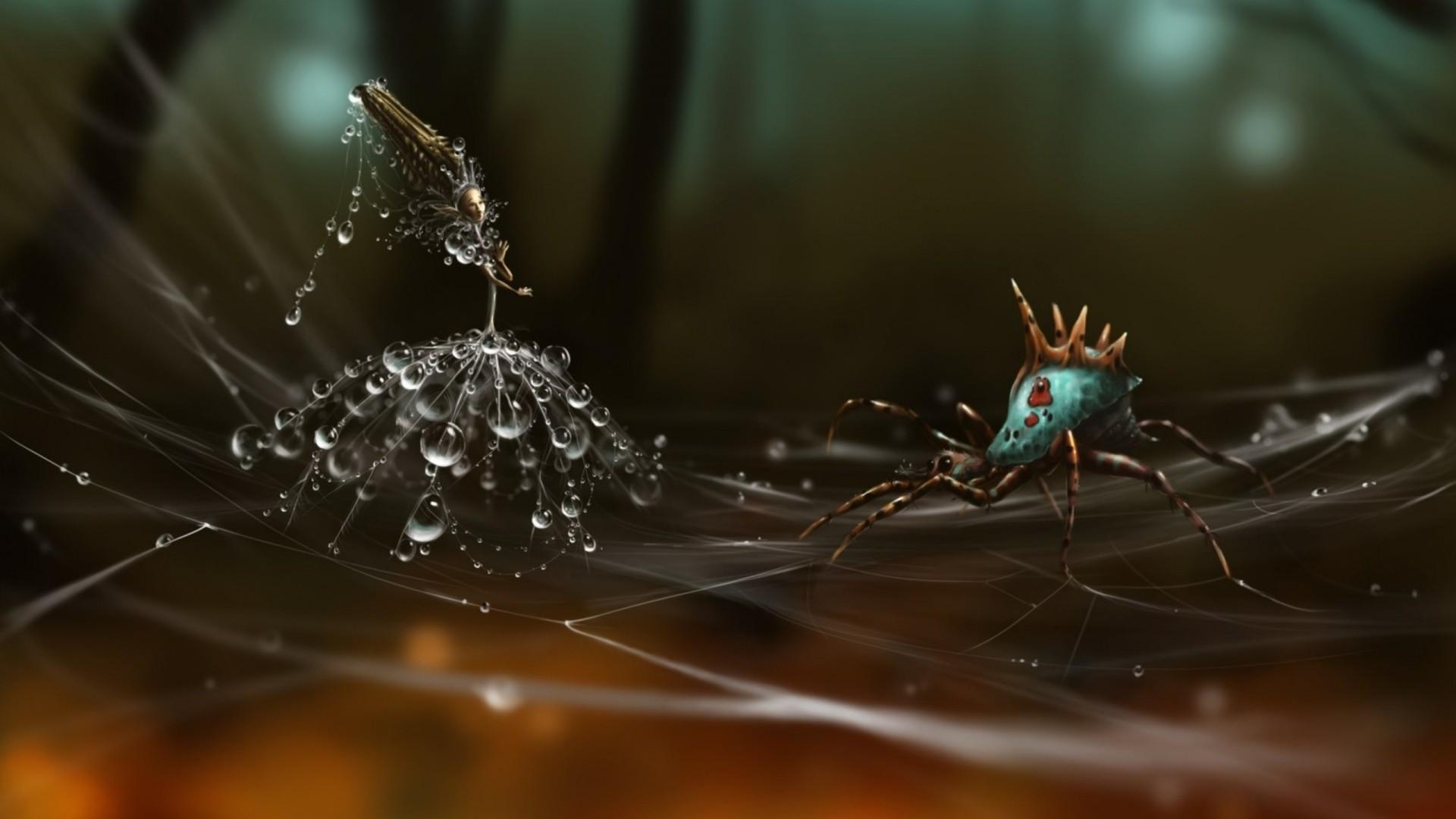 Wallpaper spider, web, dandelion seeds