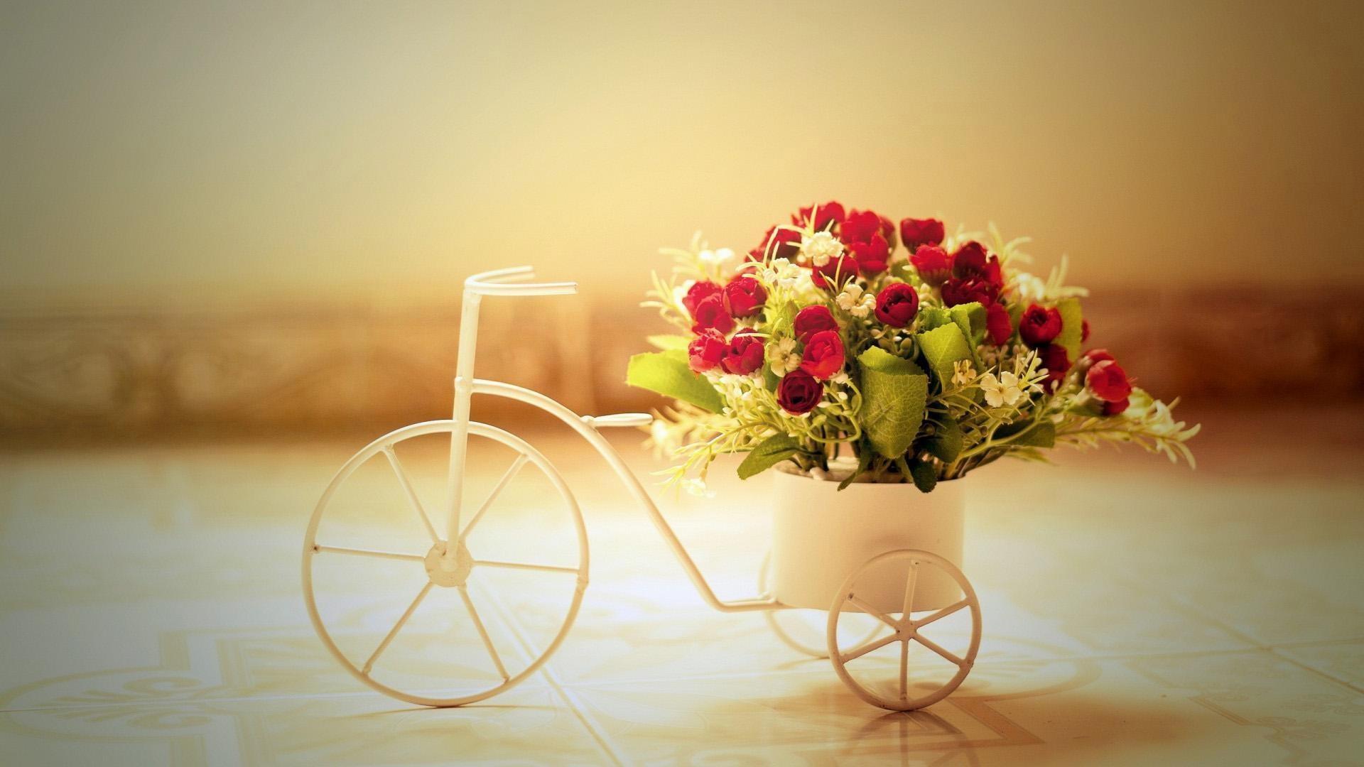 Romantic-Couple-Sunset-HD-desktop-Widescreen-High-wallpaper-