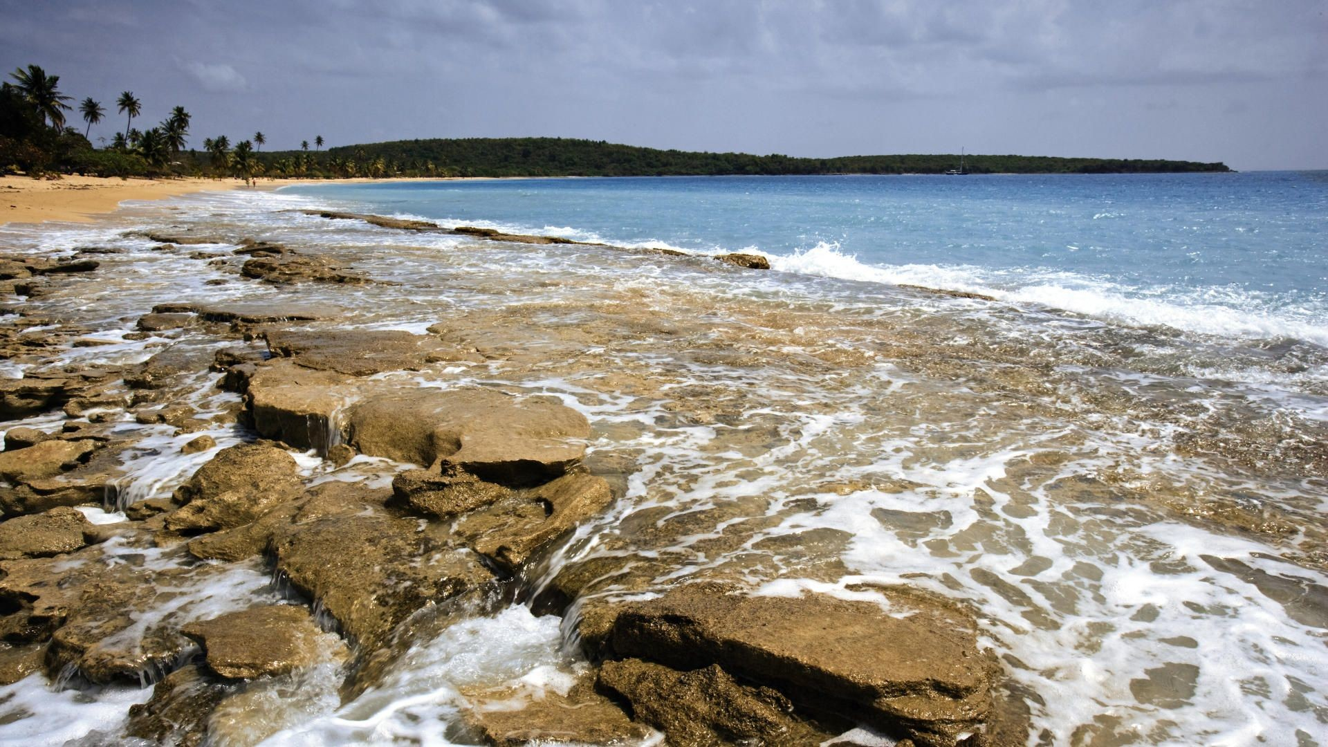puerto, screensaver, wallpapers, background, vieques, sea, nature .