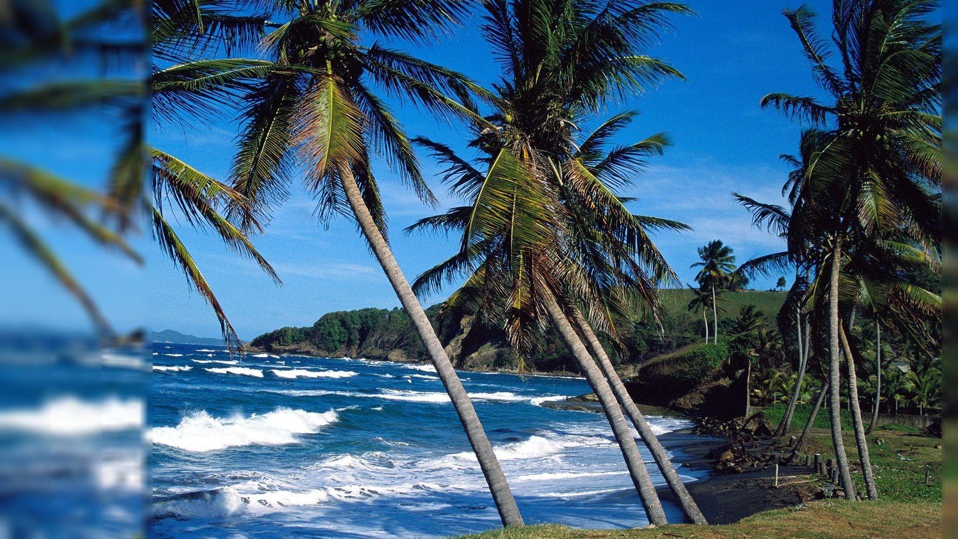 Puerto Rico #2451438