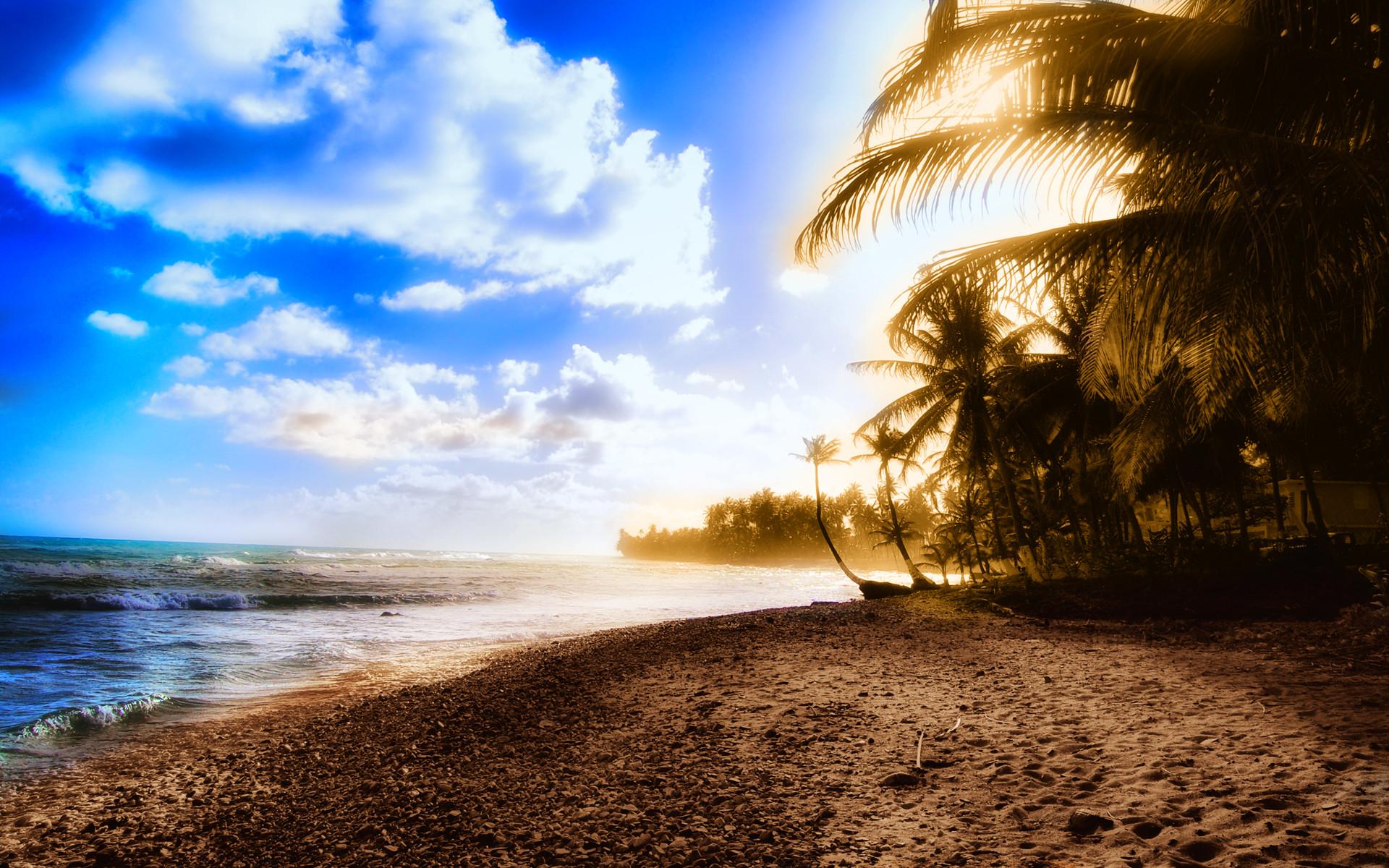 Sunny Bay – summer wallpaper