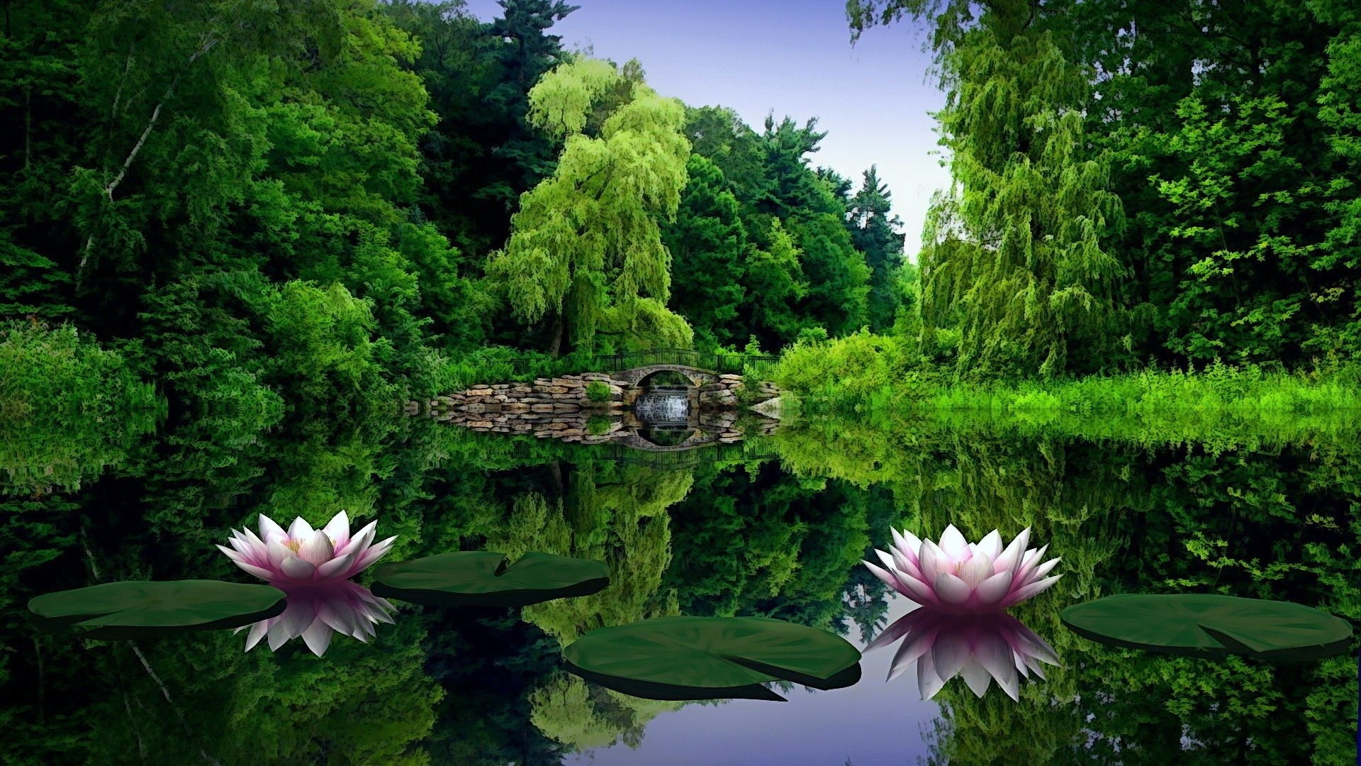Preview wallpaper water lilies, water, leaves, pond, bridge, trees, beauty