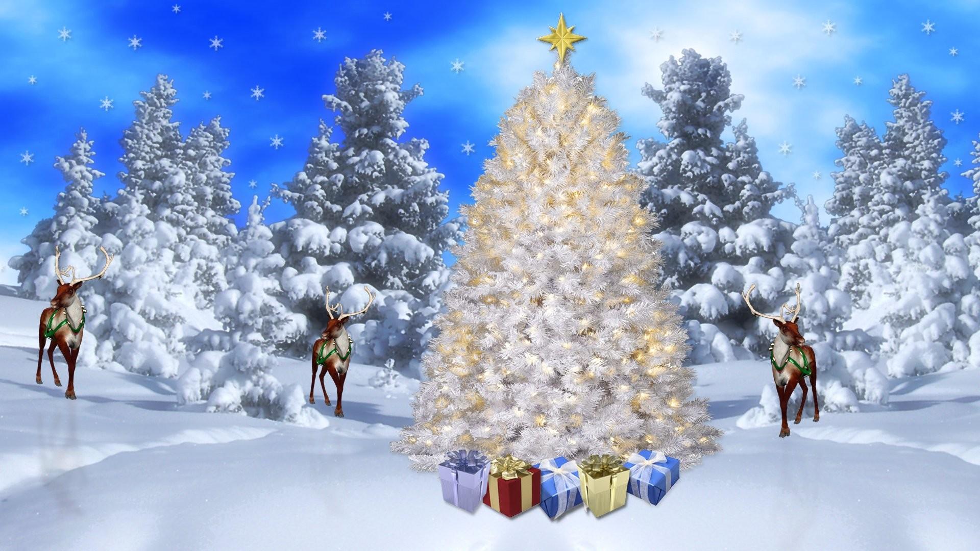 Christmas Scene 352572