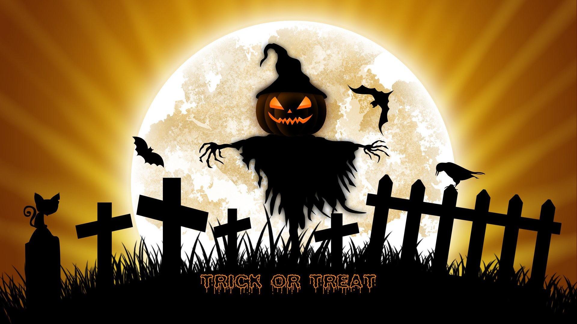 Free Pumpkin Halloween Photo.
